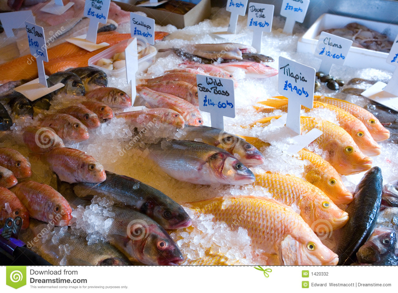 Fish for sale stock photography image 1420332 for Stock fish for sale