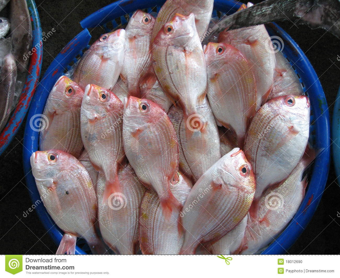 Fish for sale stock photo image 18012690 for Stock fish for sale