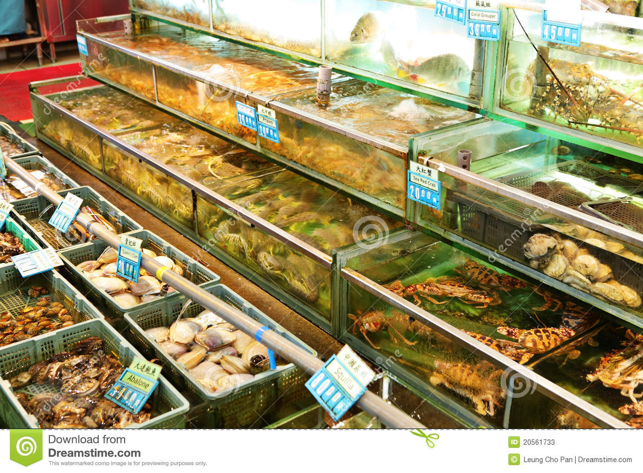 Fish for sale stock photos image 20561733 for Stock fish for sale