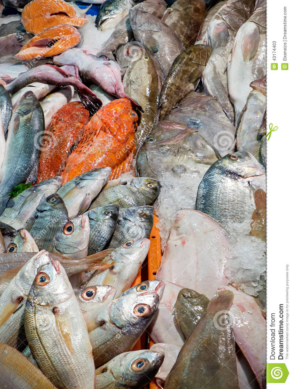 Fish for sale stock photo image 43174403 for Stock fish for sale