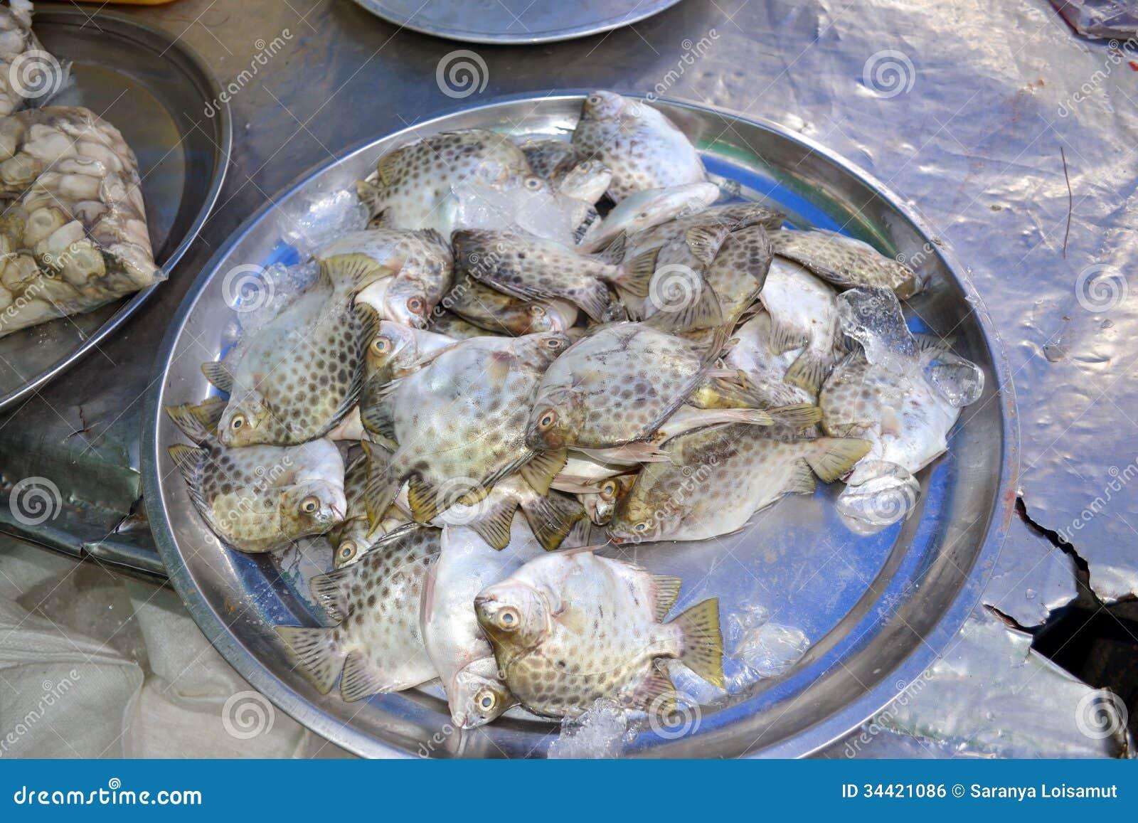 Fish royalty free stock image image 34421086 for Brackish water fish
