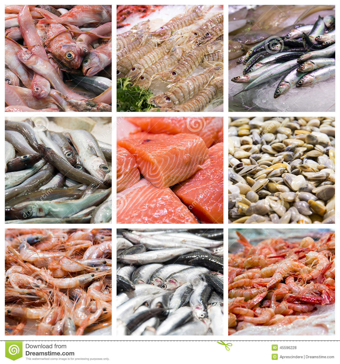Fish and seafood collage stock photo image 45596228 for Fish and seafood