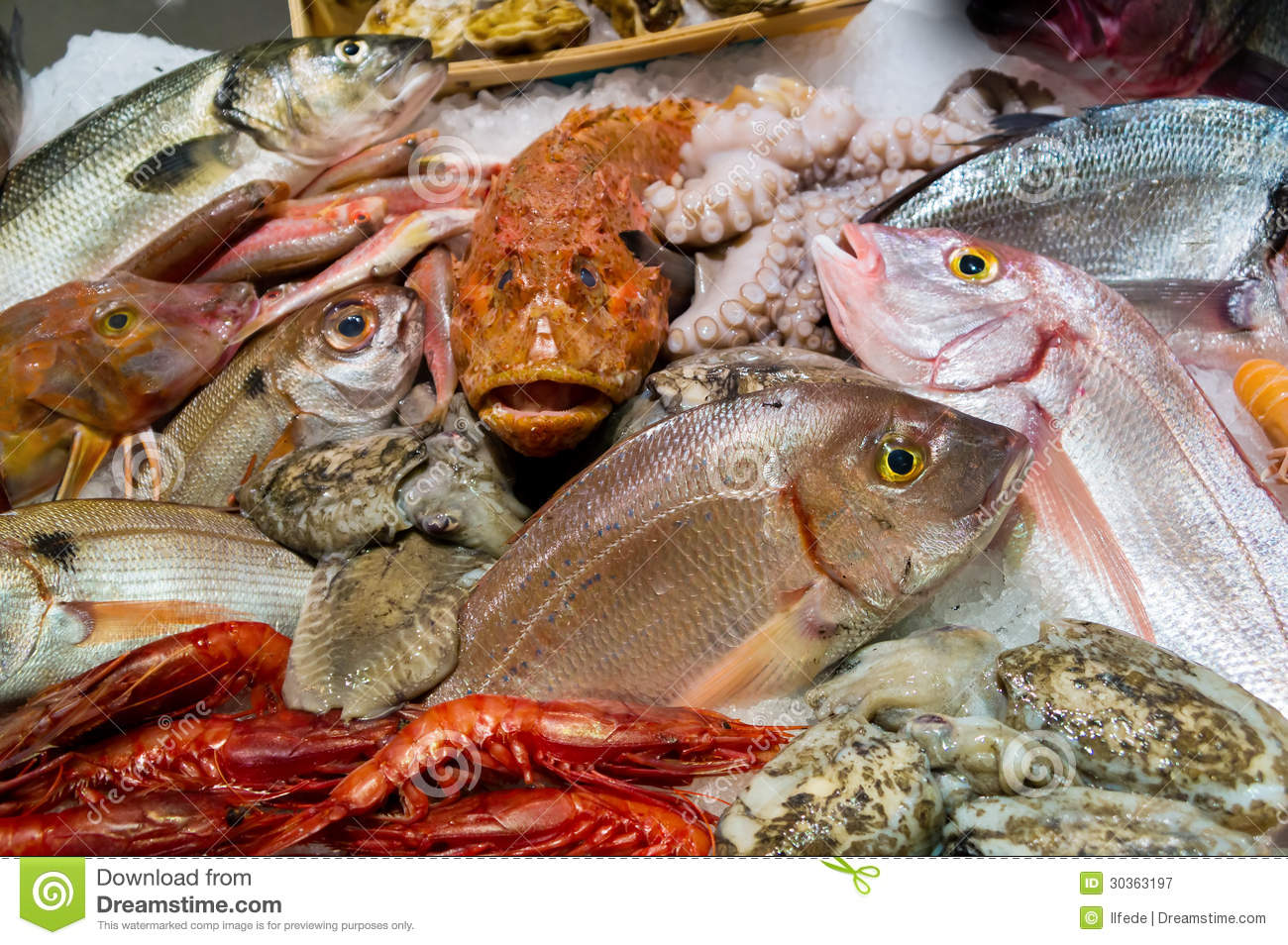 Fish and seafood royalty free stock photography image for Seafood fish market