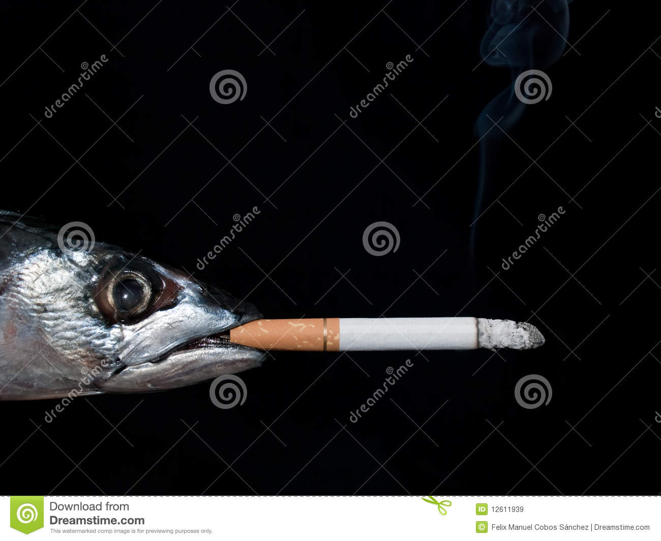 Fish Smoking Royalty Free Stock Images - Image: 12611939
