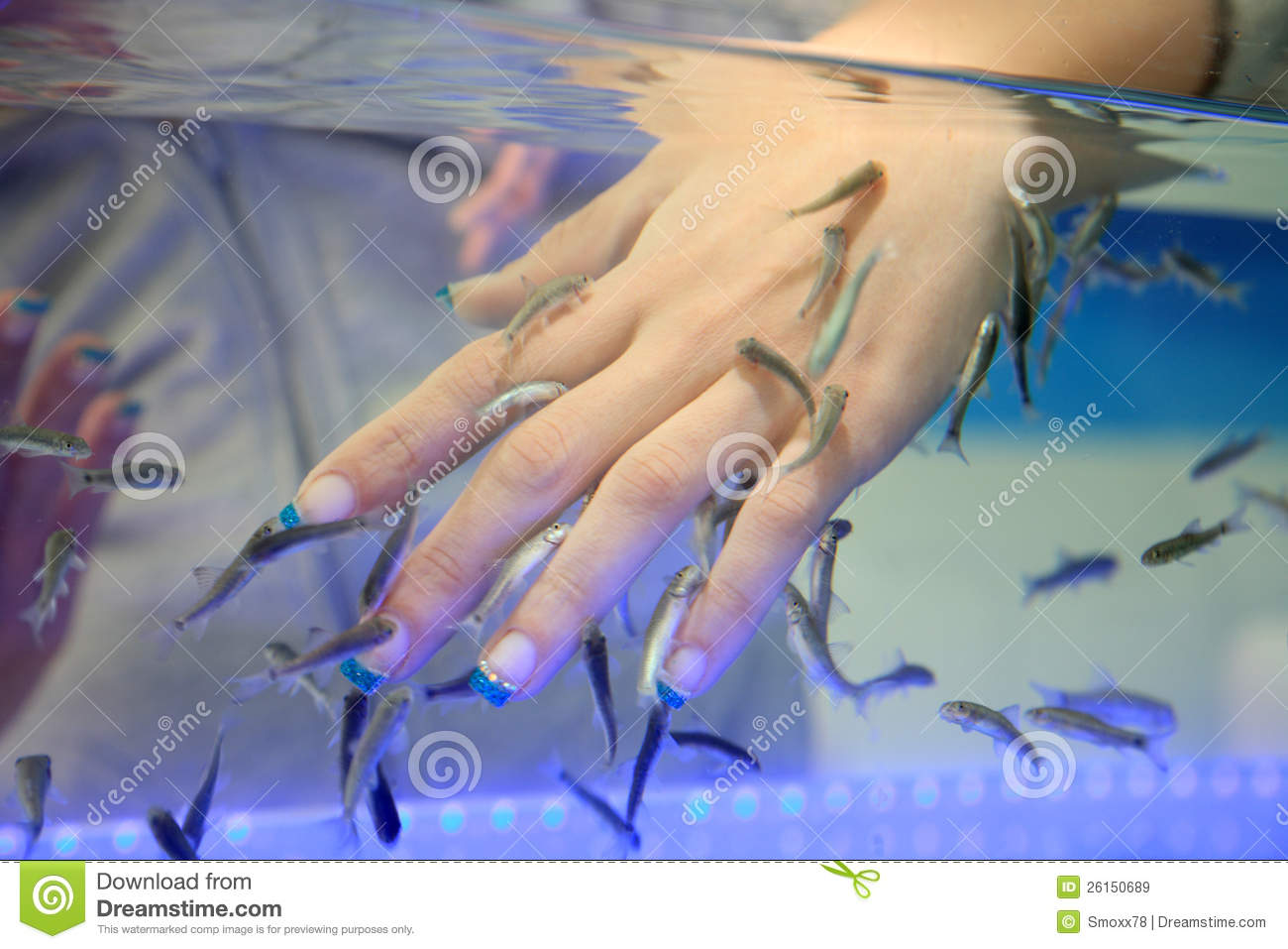 Fish spa royalty free stock images image 26150689 for Fish spa treatment