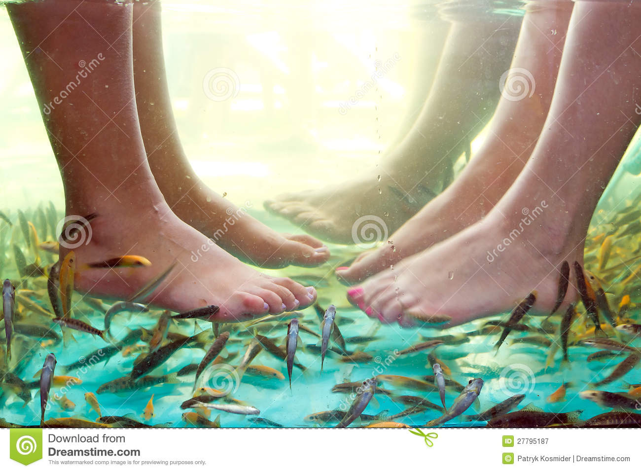Fish spa pedicure royalty free stock photography image for Fish pedicure price