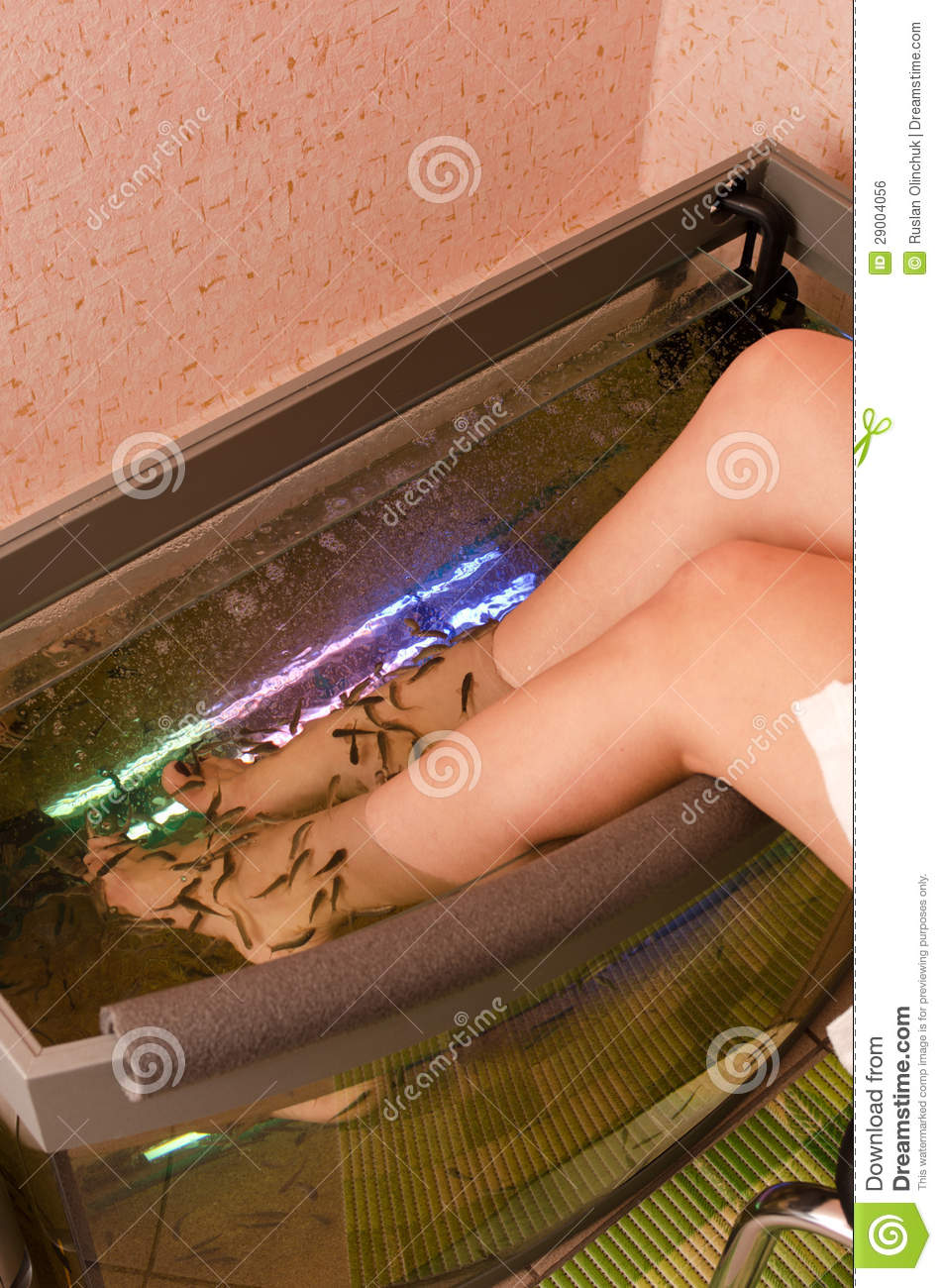 Fish spa pedicure royalty free stock image image 29004056 for Fish spa treatment