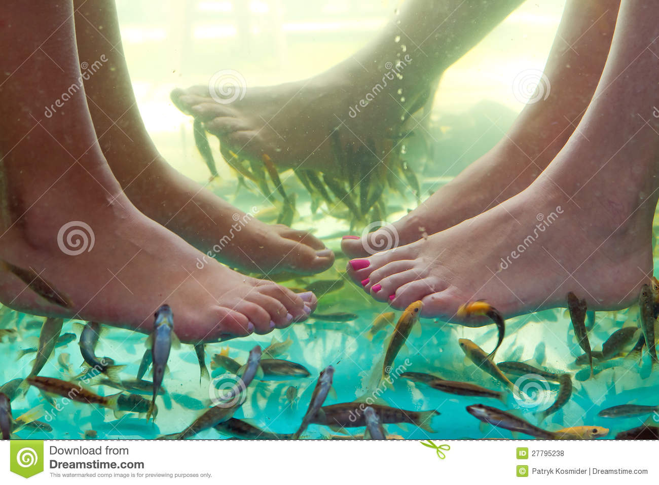 Fish spa pedicure of feet royalty free stock photos for Fish pedicure price