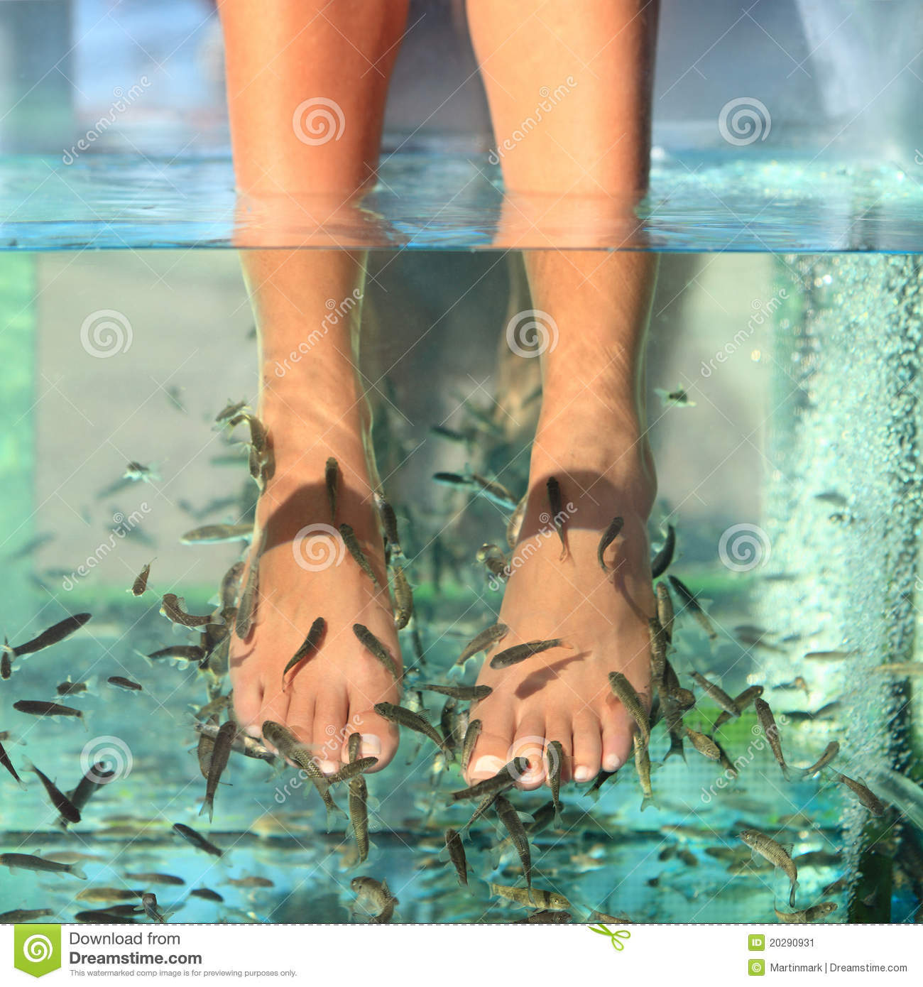 Fish spa skin treatment stock image image 20290931 for Fish spa treatment
