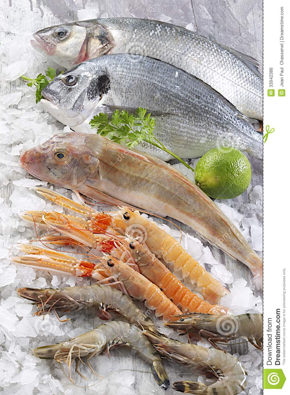 Fish breeding food royalty free stock photography for Fish fast food near me