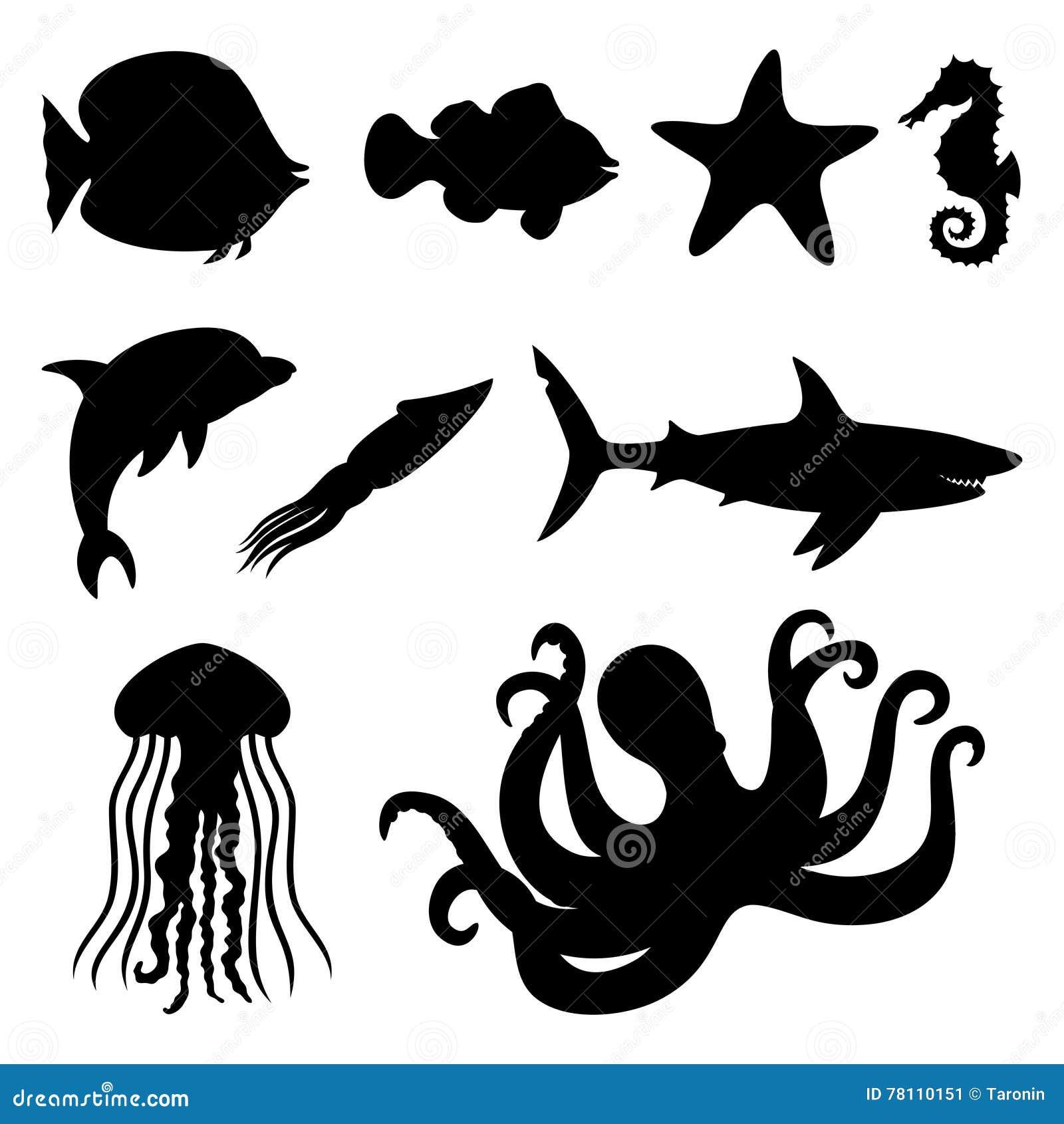 Fish Starfish Seahorse Squid Dolphin Shark Jellyfish