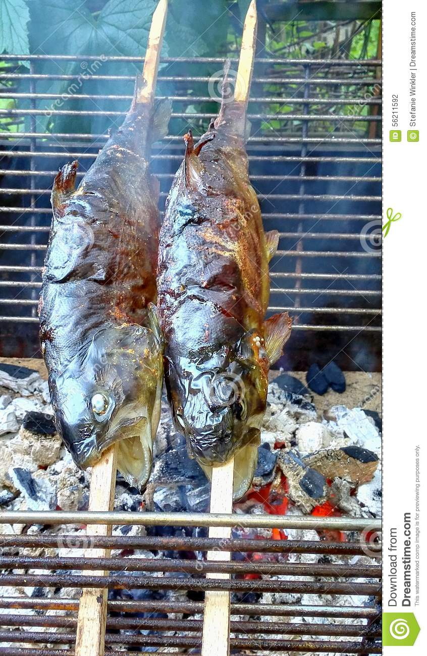 Fish on a stick stock photo image 56211592 for Fish on a stick