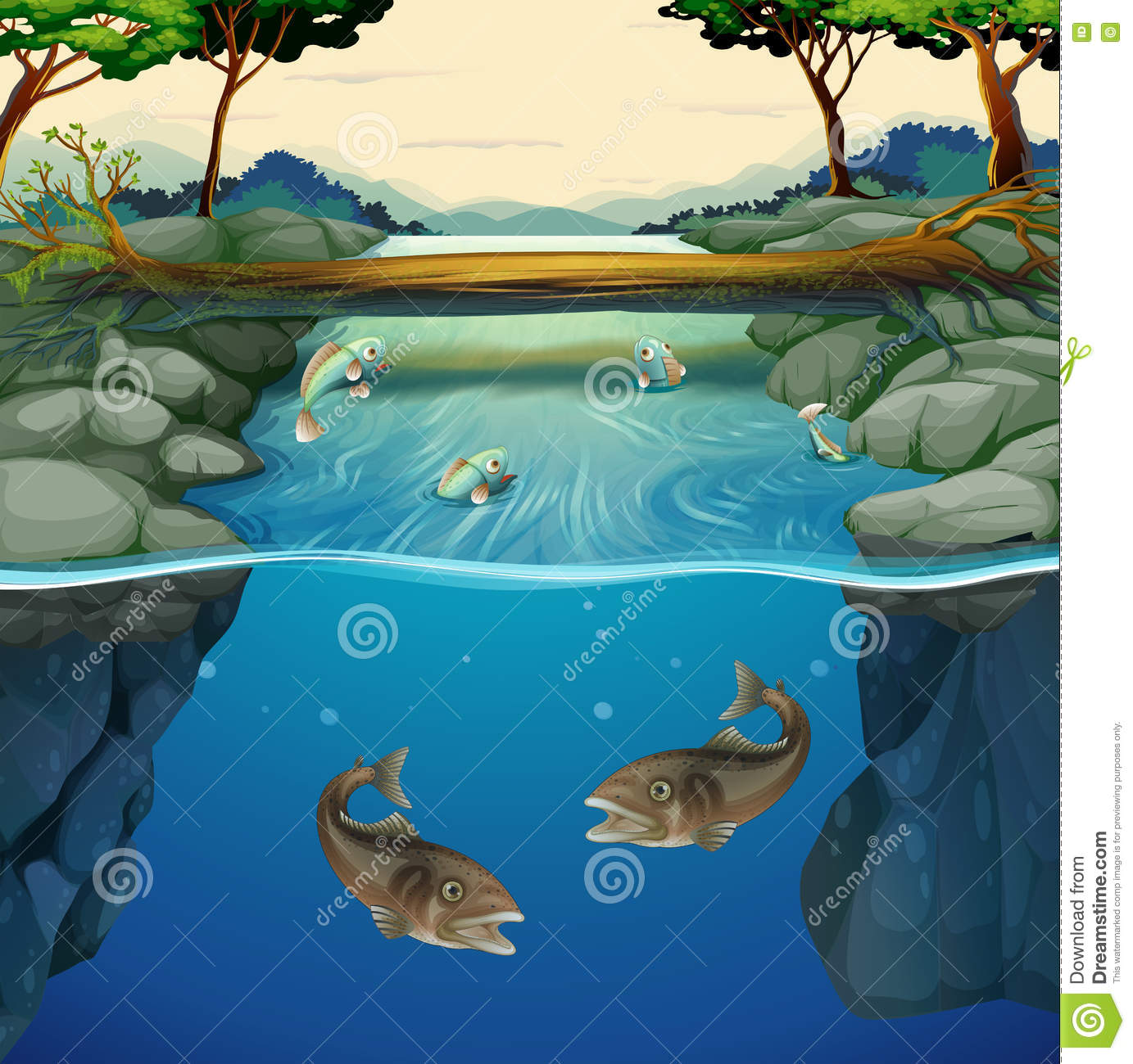 Fish swimming in the river stock vector image 73094024 for Dream of fish swimming