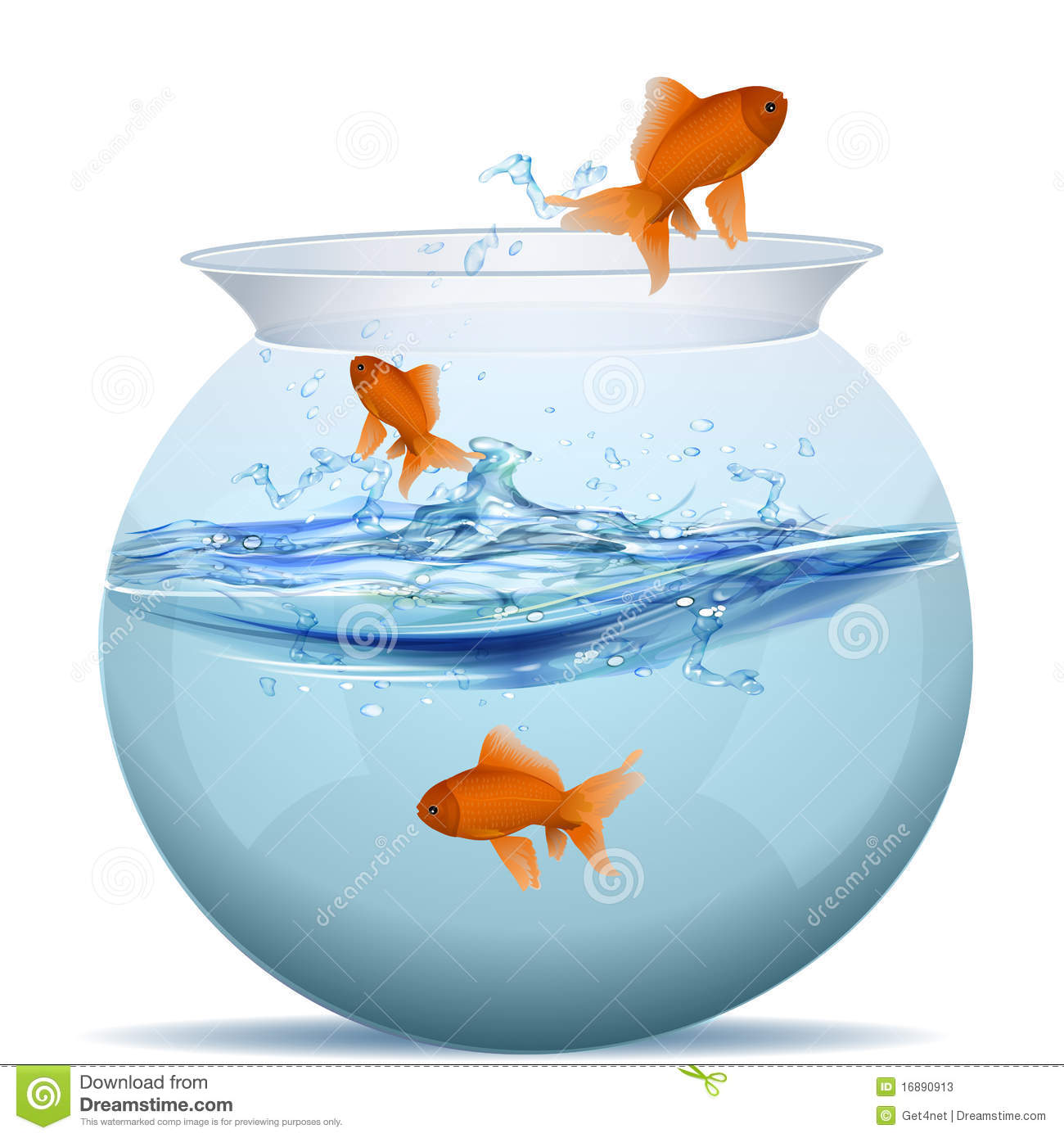 Fish tank stock photos image 16890913 for Stock tanks for fish