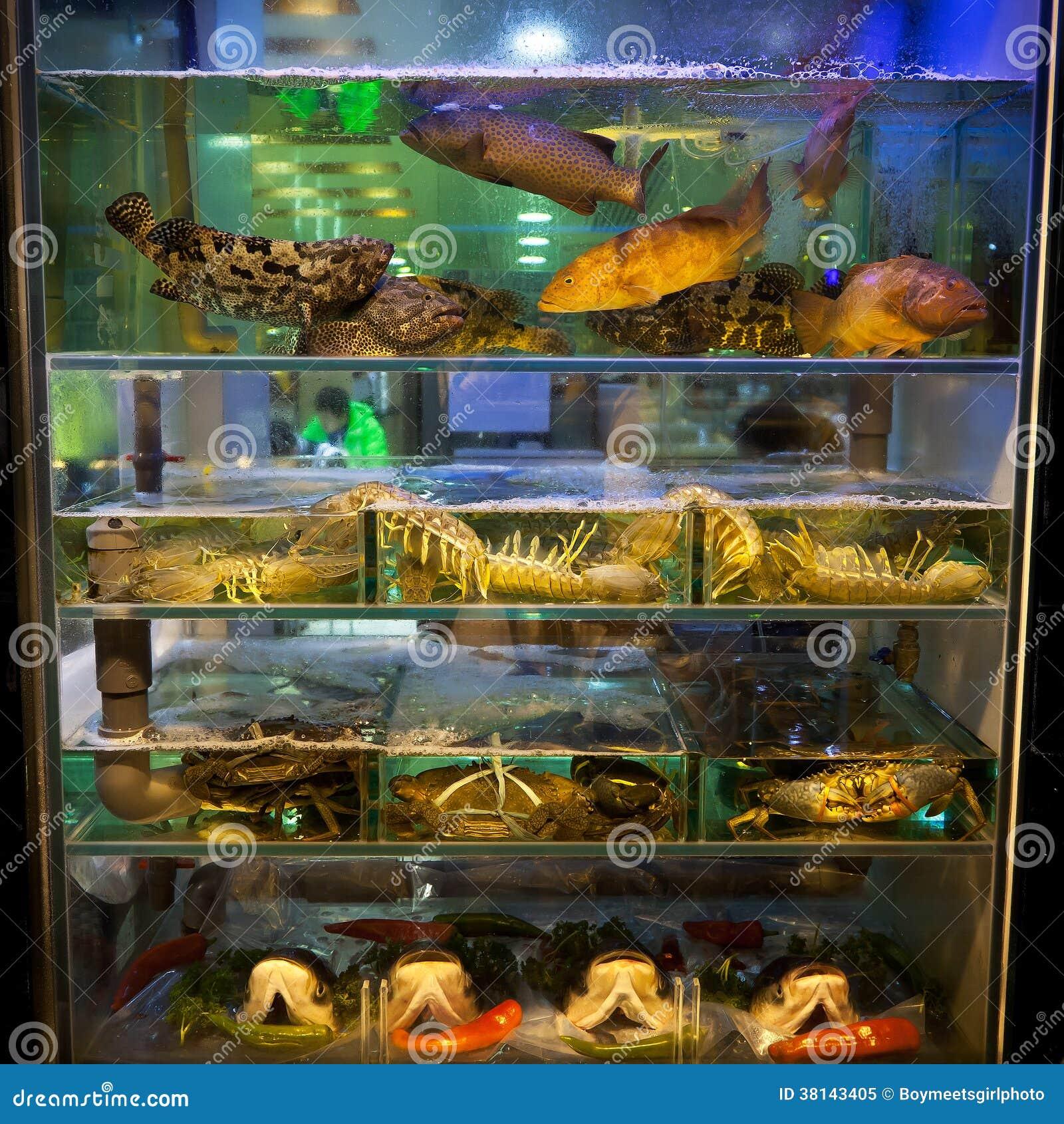 Fish tank hong kong restaurant royalty free stock photo for Outside fish