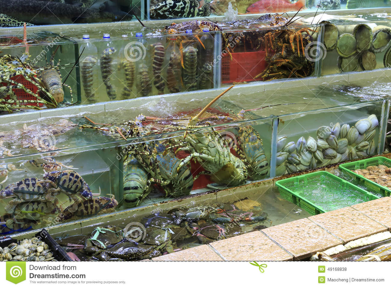 Fish tank of seafood restaurant stock photo image