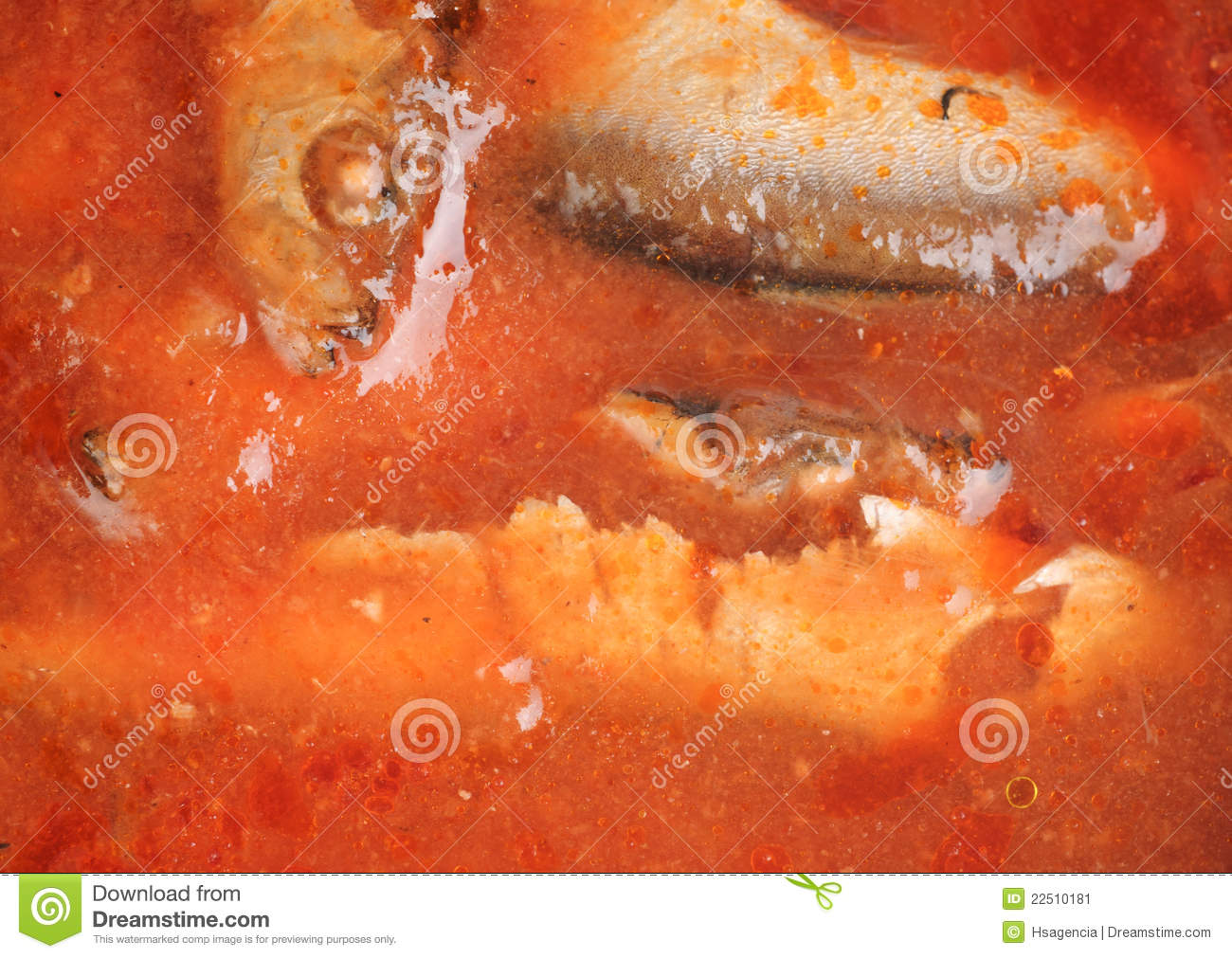 Fish In Tomato Sauce Stock Image - Image: 22510181