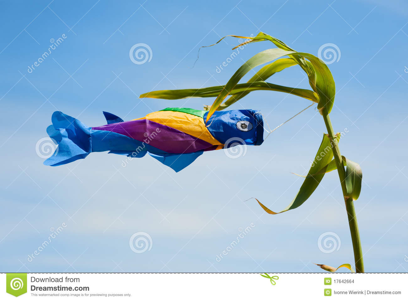 Fish in the wind stock images image 17642664 for Fishing in the wind