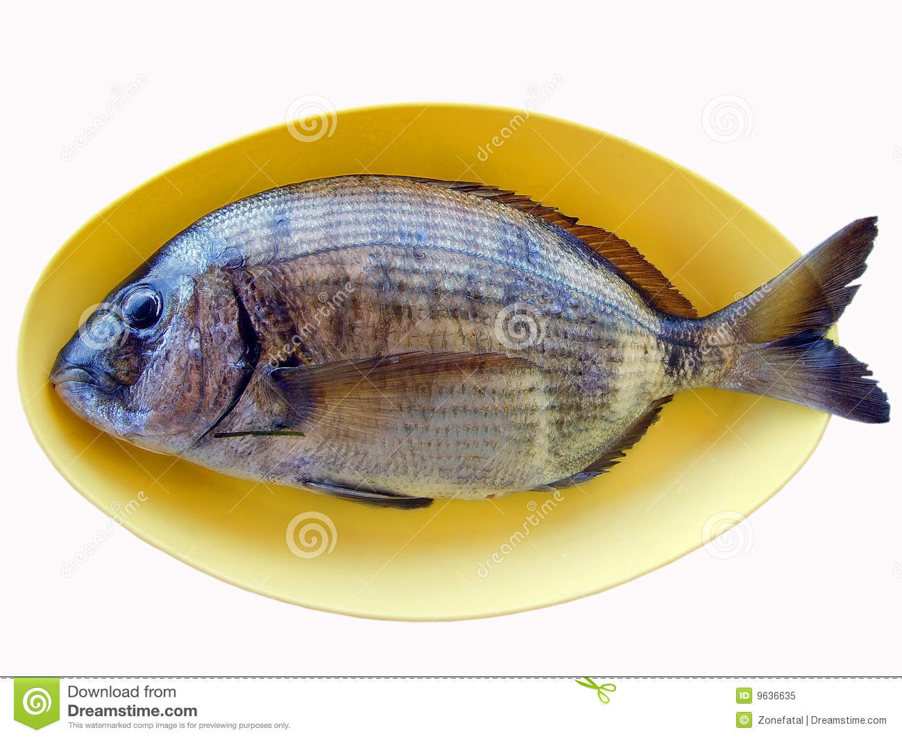 Fish In Yellow Plate R...