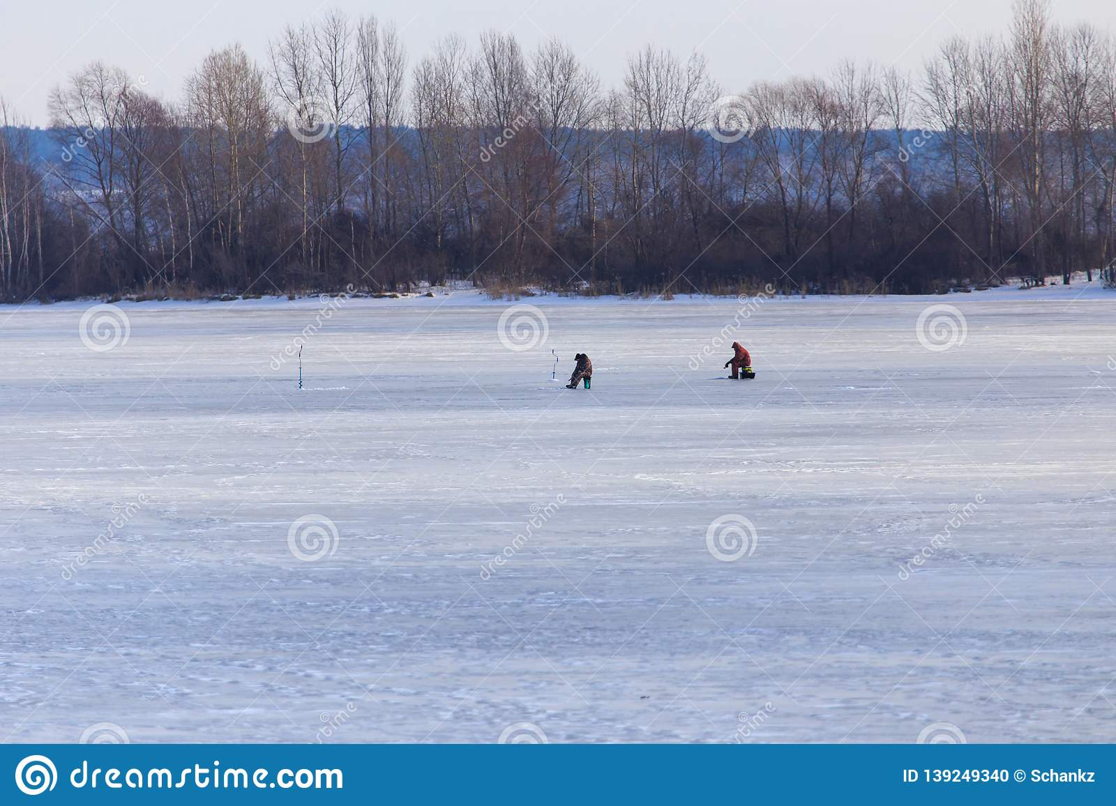 Fisherman catches fish on ice in winter