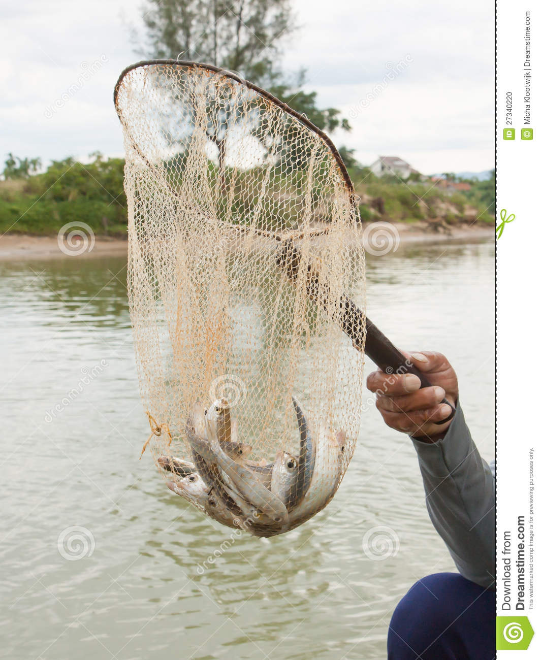 Fisherman hold a net with several small fish in it stock for Small fish net