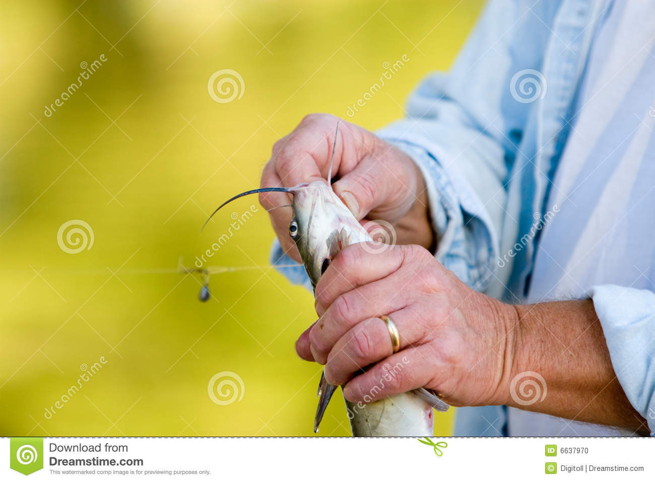 Fisherman removing a hook stock photo image 6637970 for Removing fish hook