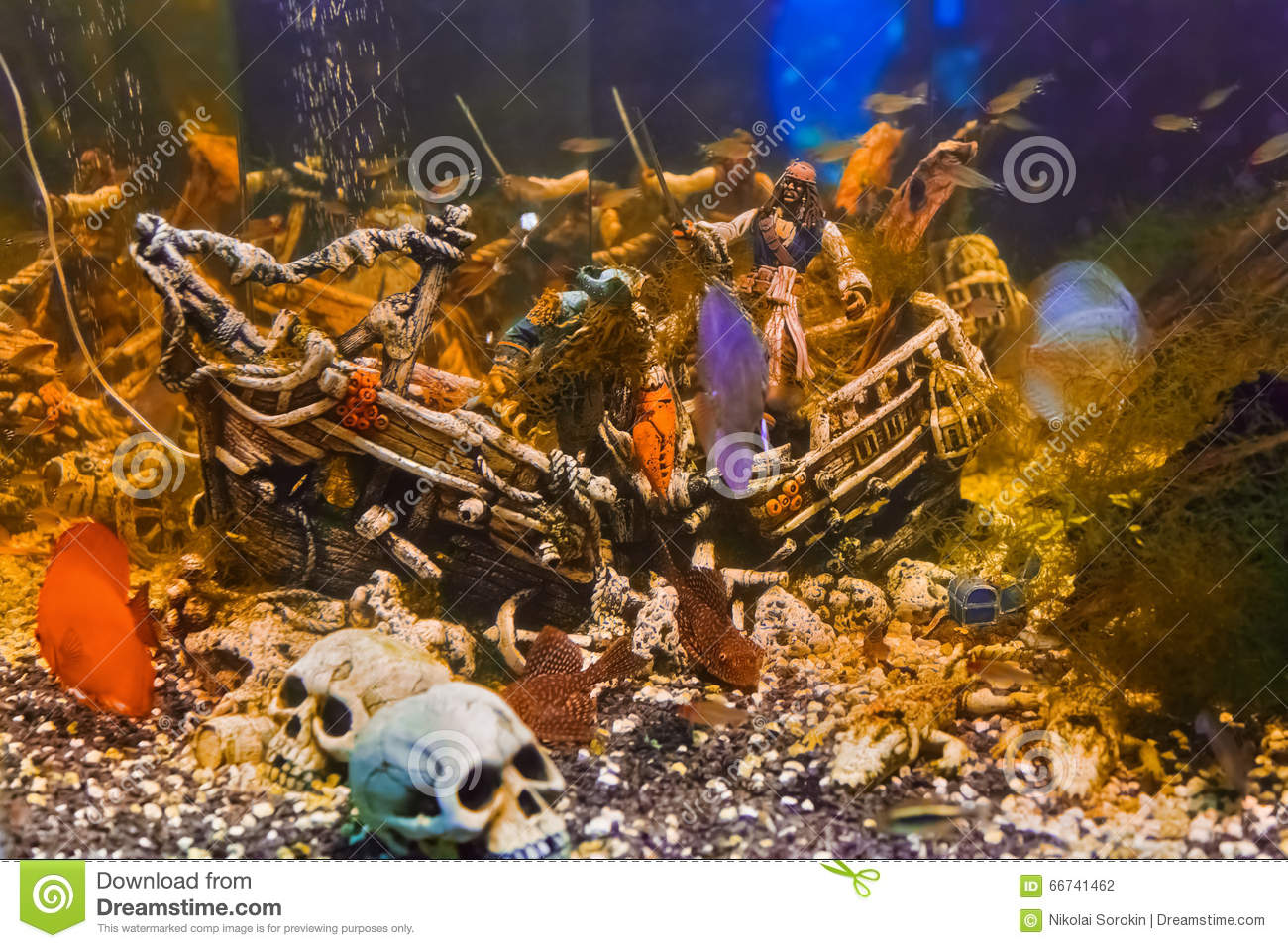 Fishes and pirate ship stock photo image 66741462 for Fish tank pirate ship