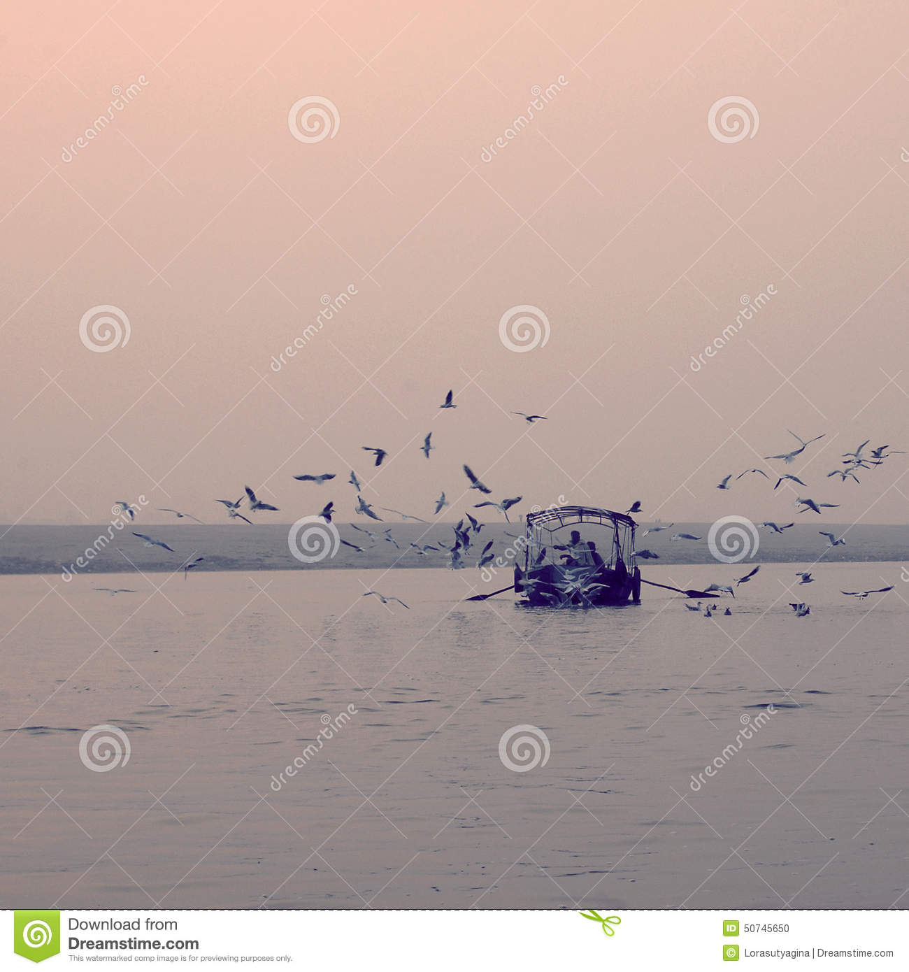 effect of fishing The effects of fishing and environmental variation on the regeneration of  to the effect of the  relative.