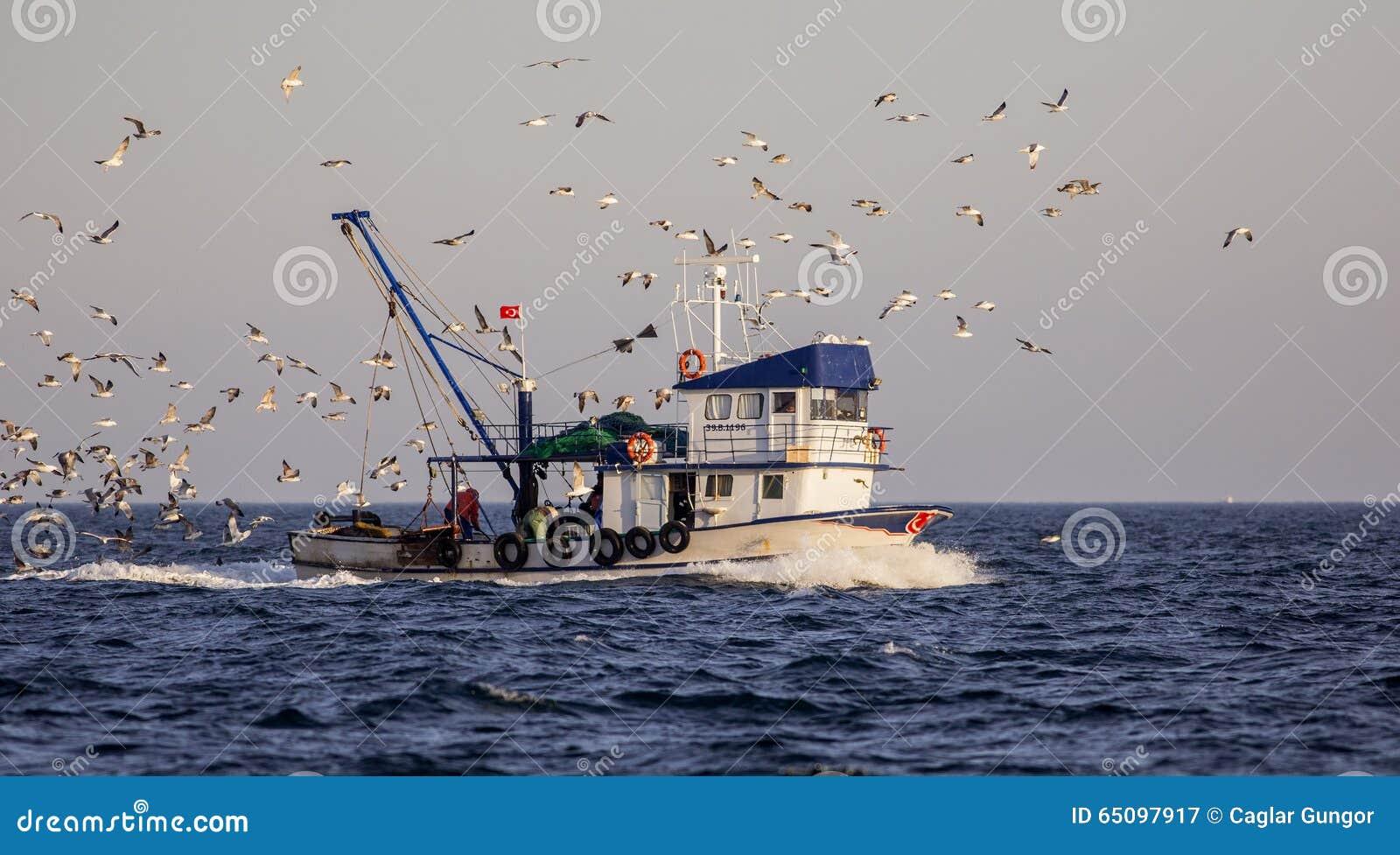 Fishing Boat with Sea Gulls