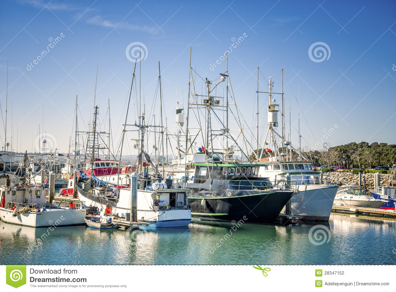 Fishing boats san diego california stock photo image for Fishing license san diego