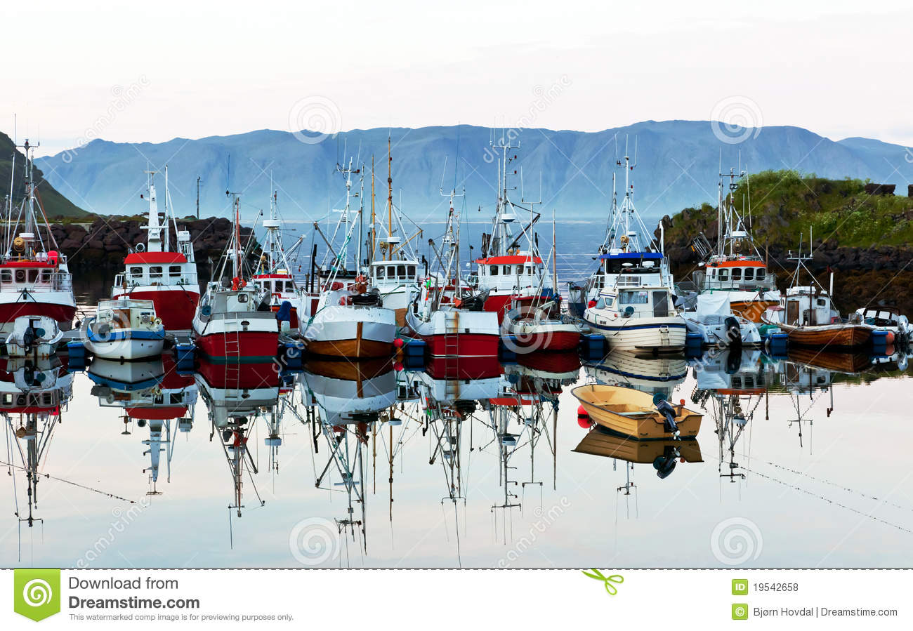 Download Fishing business boats stock photo. Image of fleet, fishy - 19542658