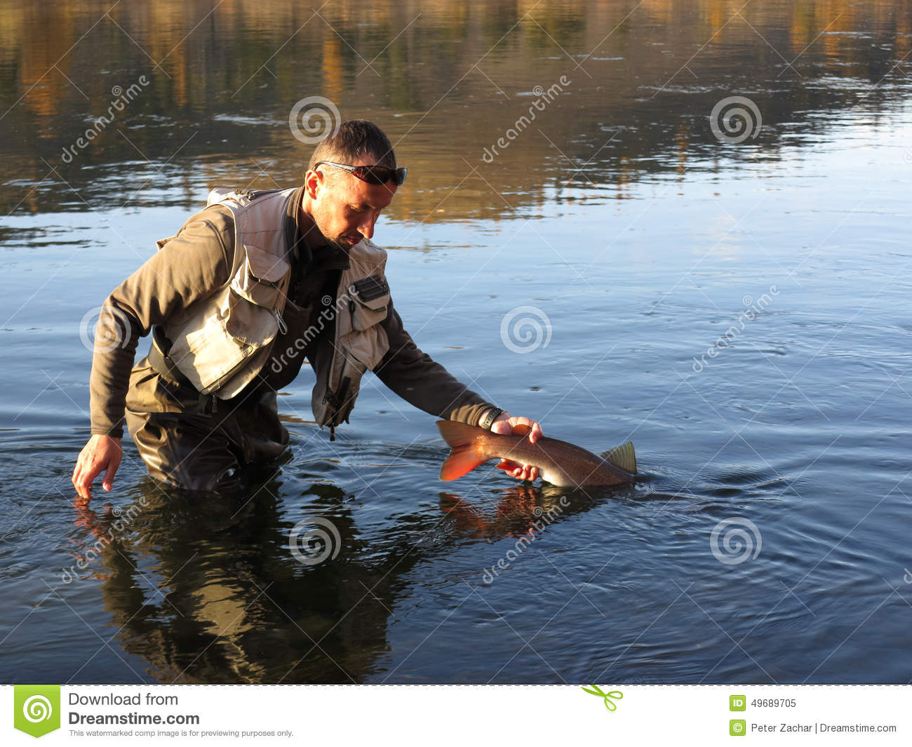 Fishing Catch And Release Stock Photo Image 49689705