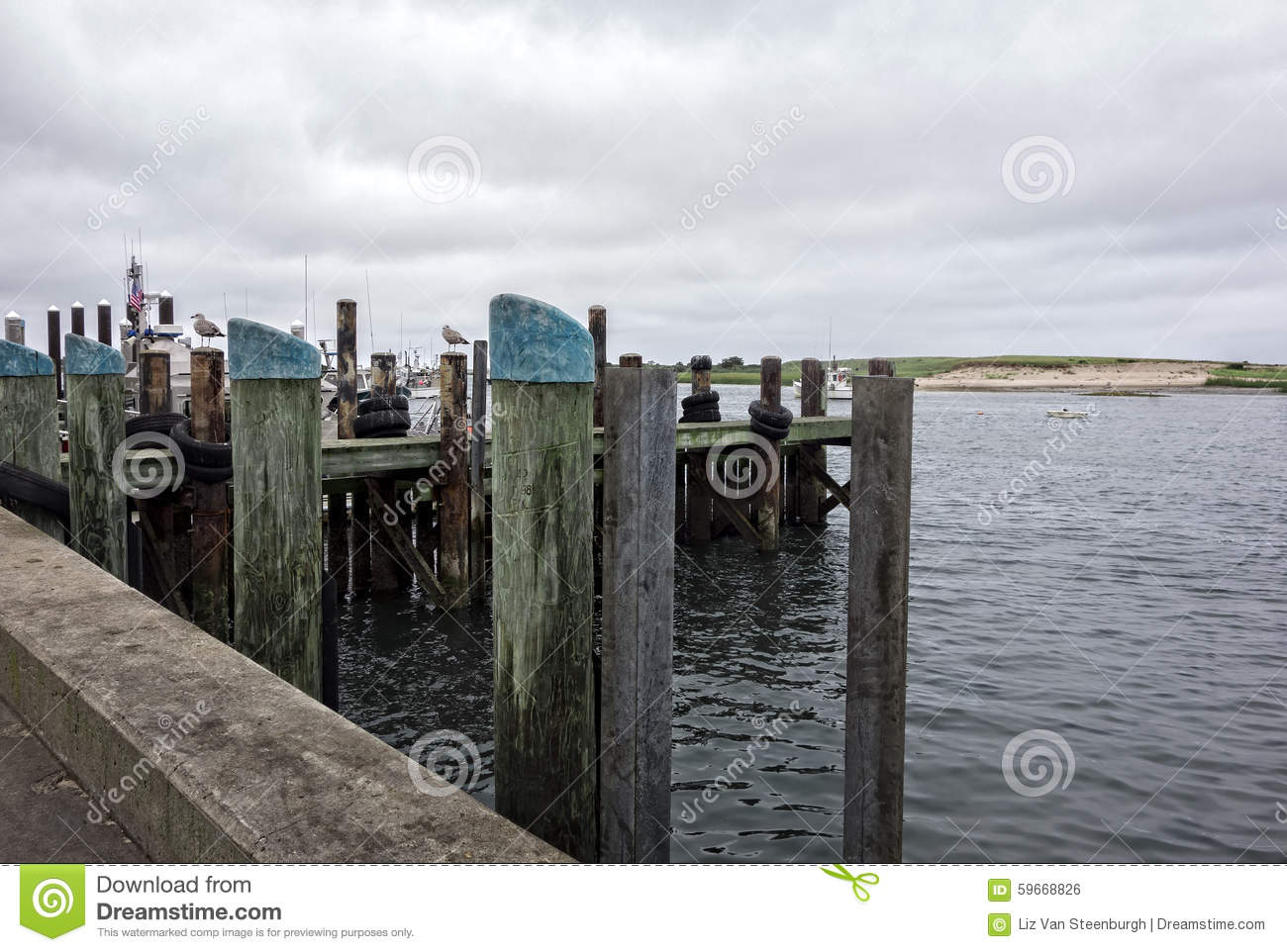 Fishing dock stock photo image of seagulls marine for Dock pilings cost