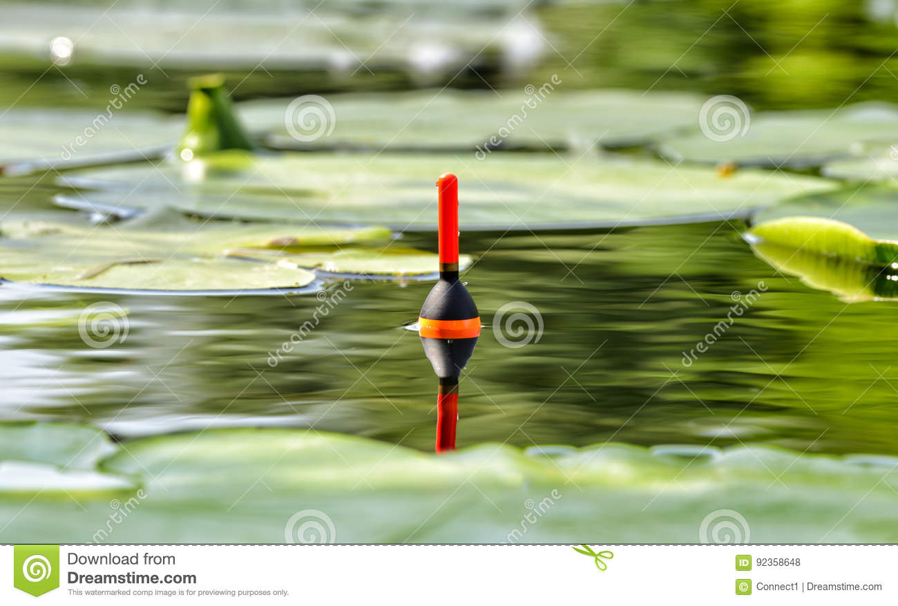 Fishing float in the lake among water lily