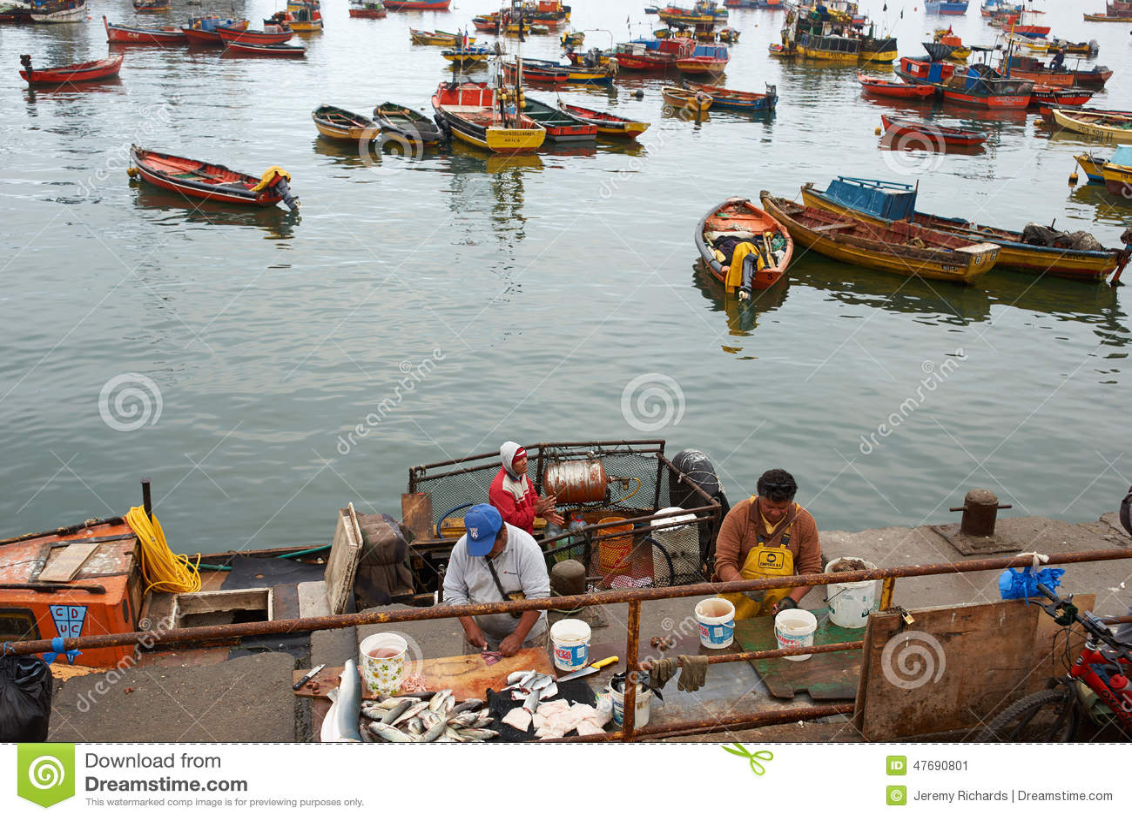 Fishing harbour editorial photo image 47690801 for Fisherman s landing fish report
