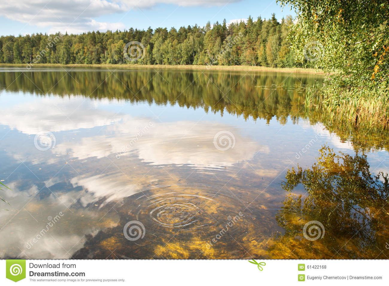 Fishing lake with clear water stock photo image 61422168 for Clear lake fishing