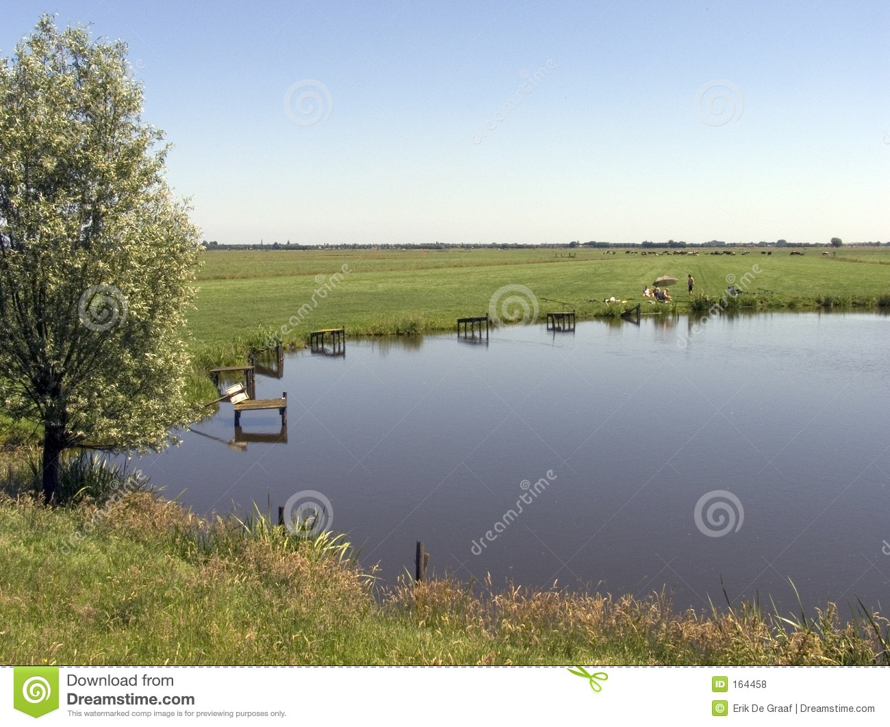 Fishing pond royalty free stock photos image 164458 for Stocked fishing ponds near me