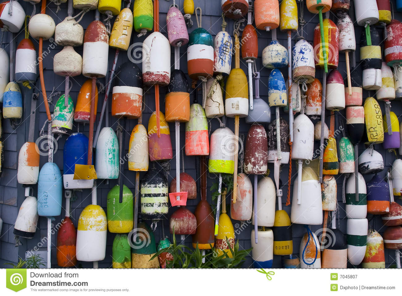 Fishing tools royalty free stock photography image 7045807 for Wall fishing tools