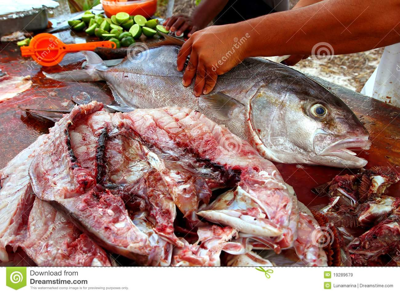 Fishmonger preparing amberjack fish fillet royalty free for Amberjack fish recipes