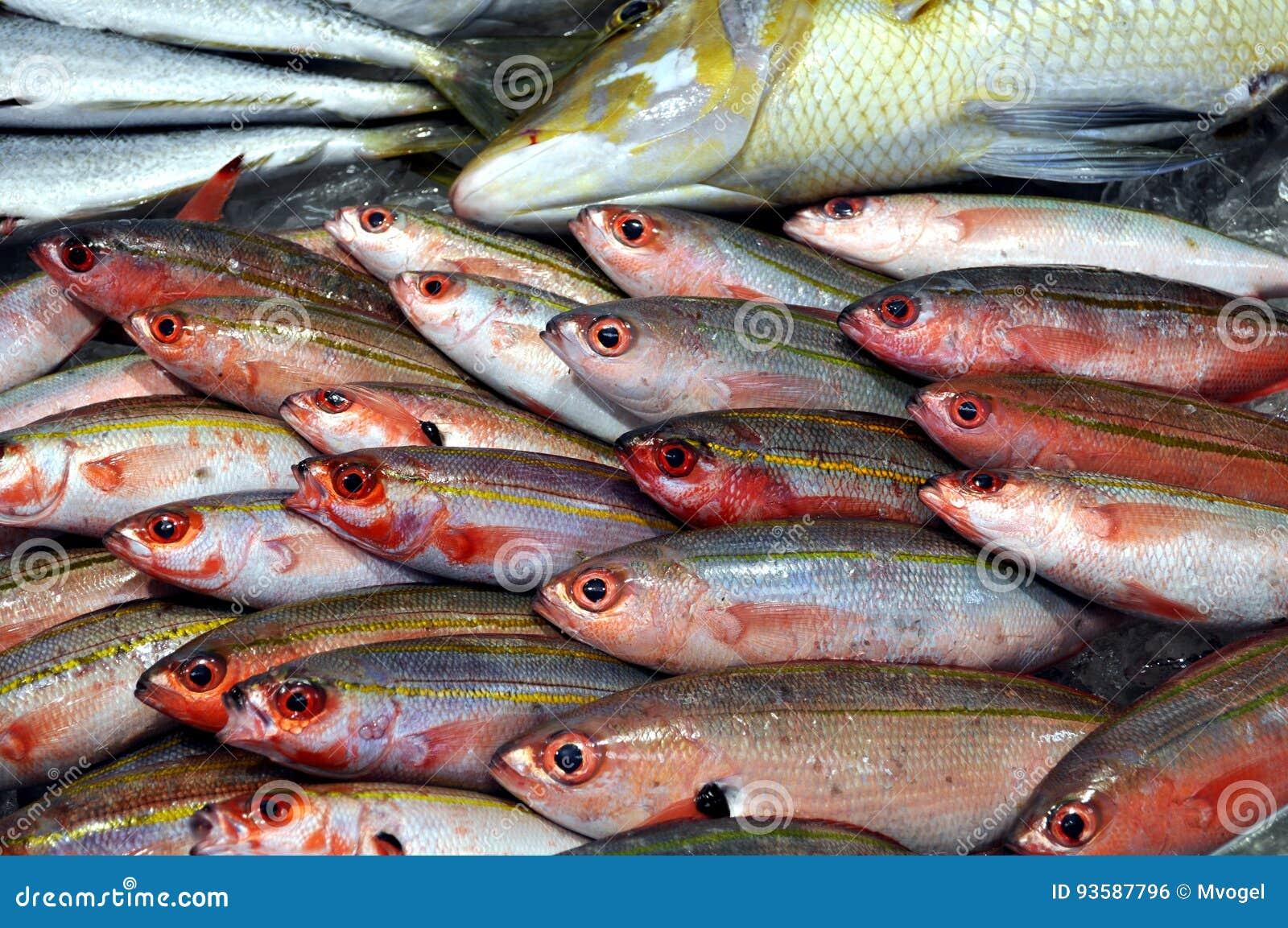 Fiska försäljningen
