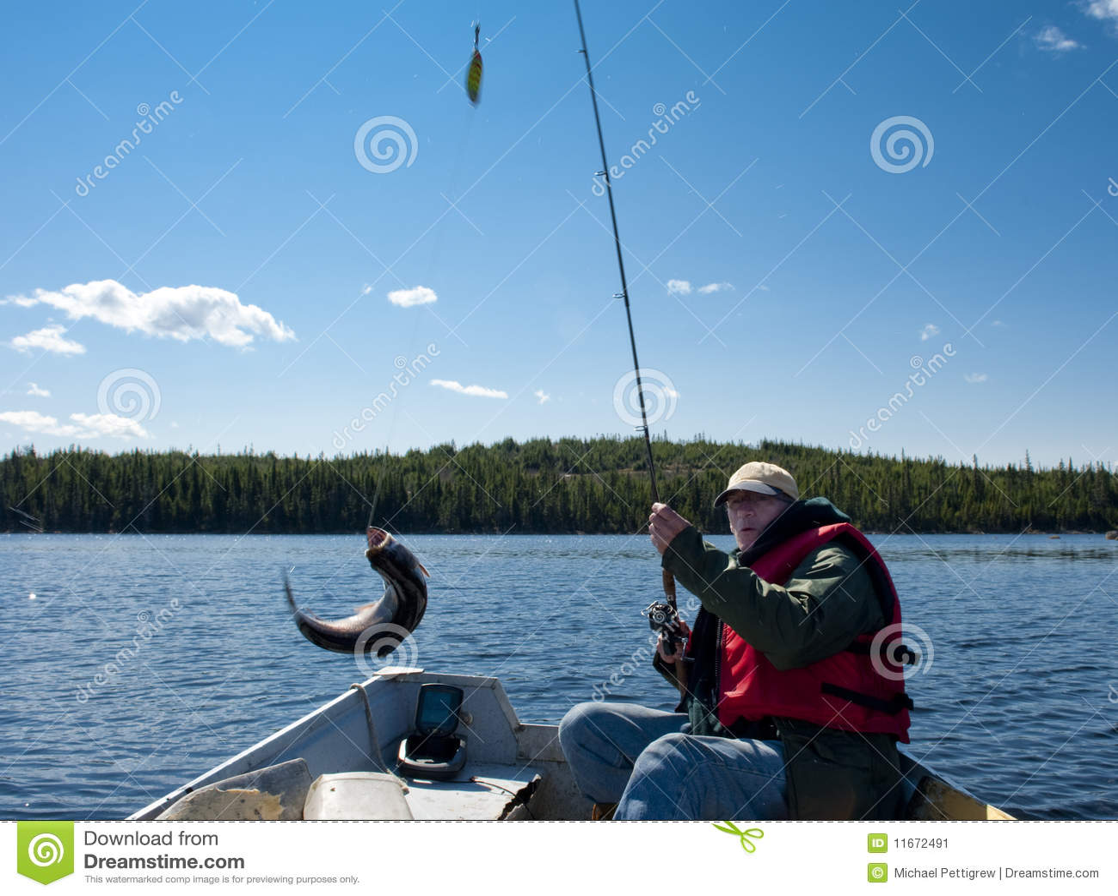 Fiskeforell