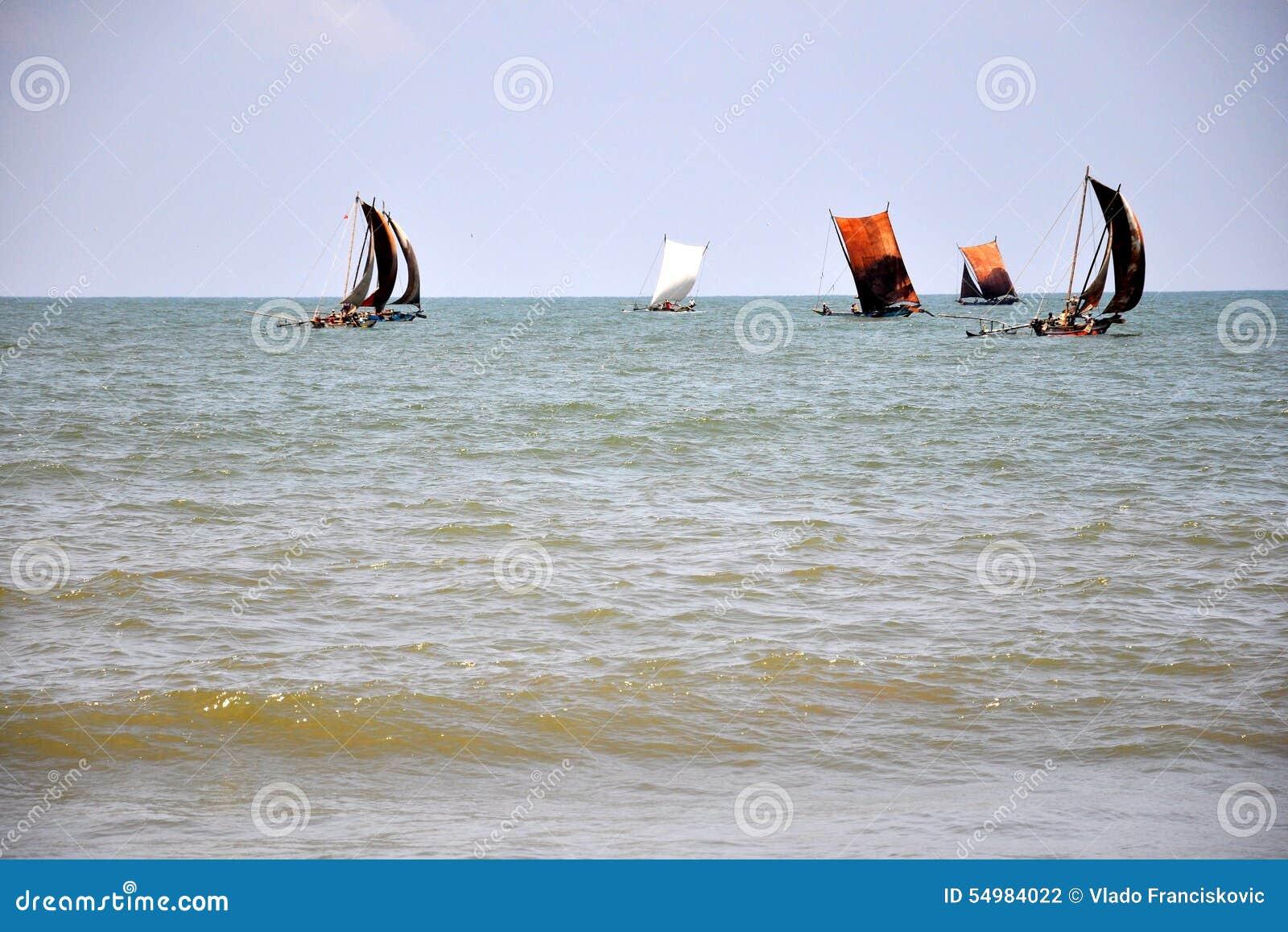 Fiskesegelbåtar i Negombo, Sri Lanka