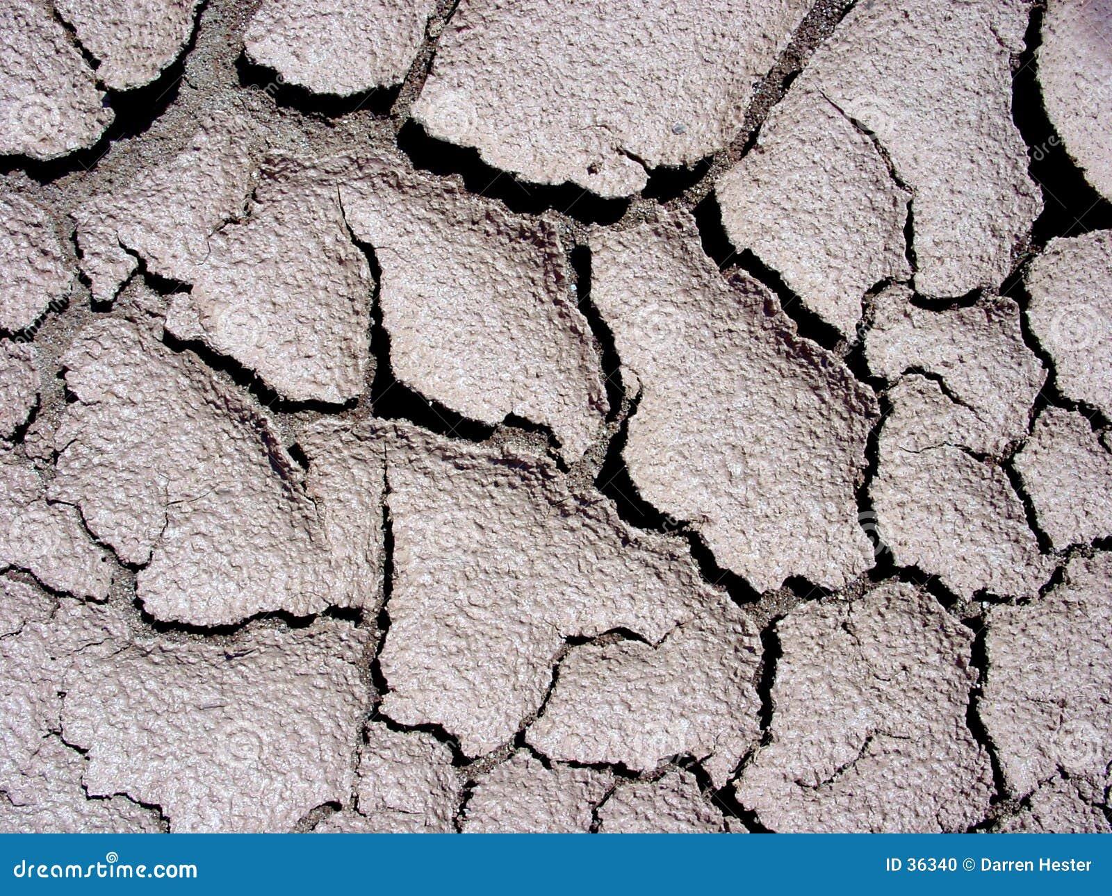 Fissures dans la boue