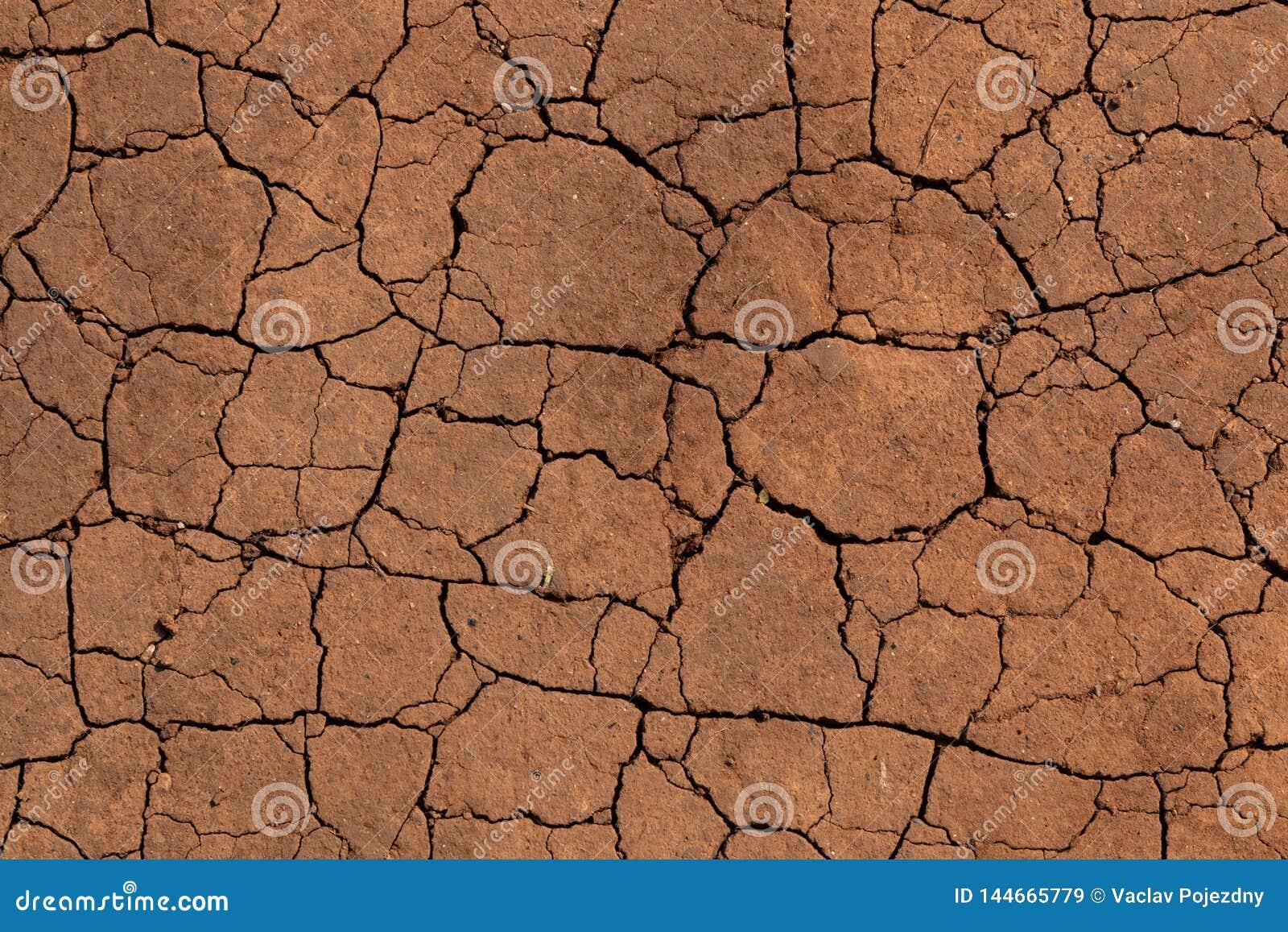 Fissures dans un sol sec
