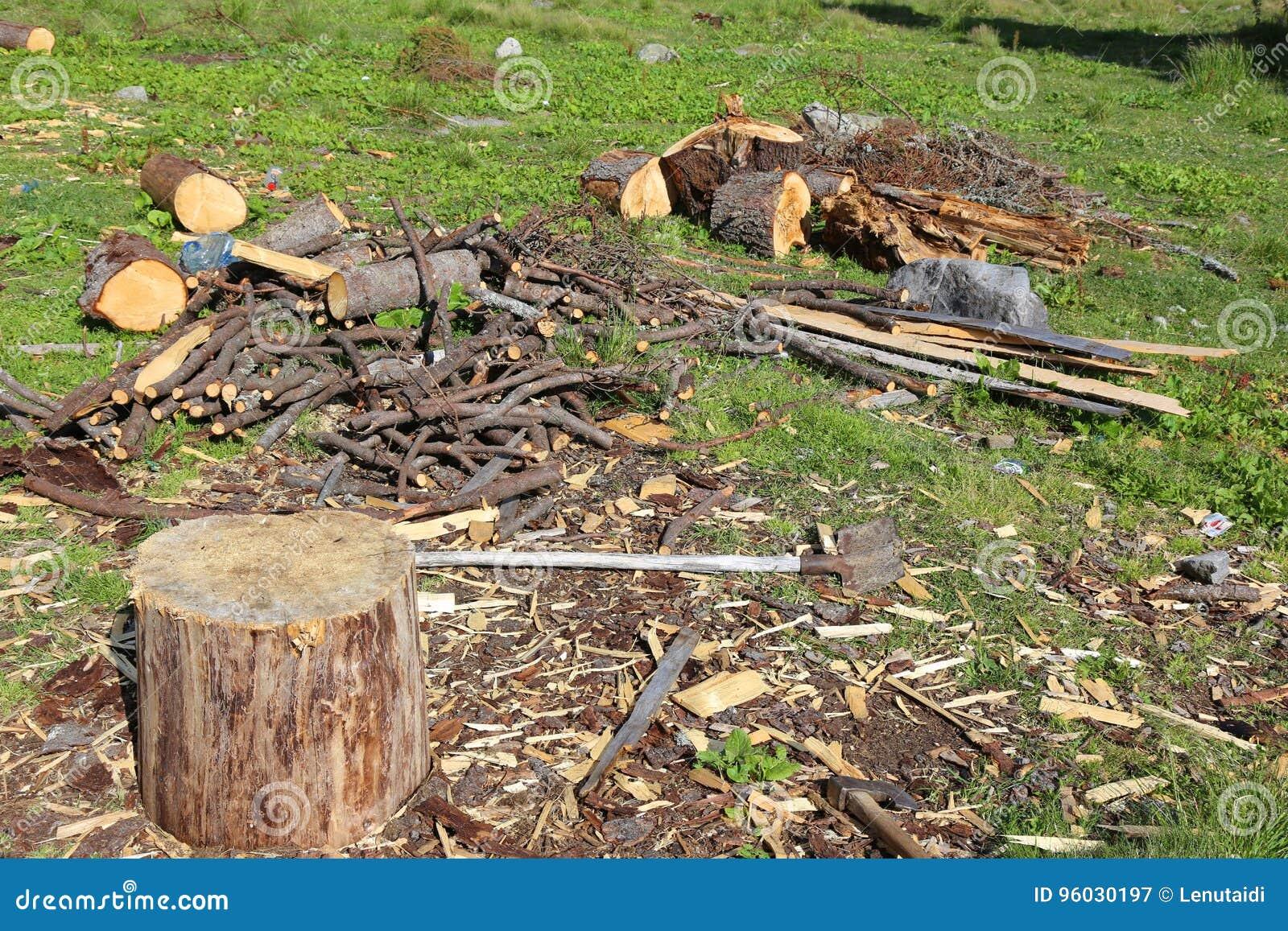 Fiszorek - miejsce ciąć drewno