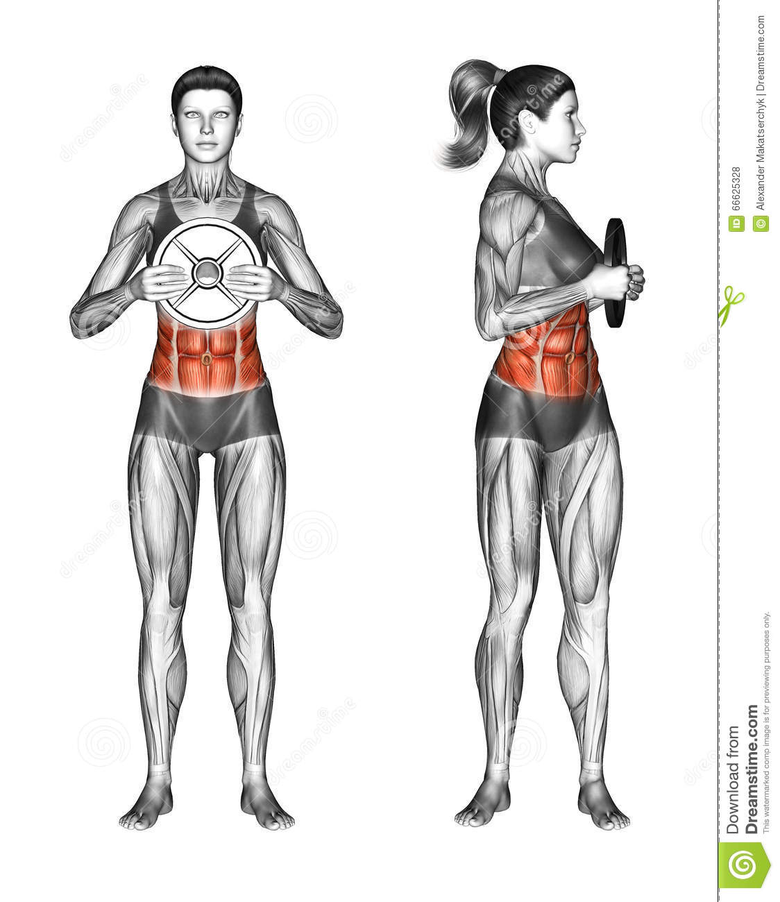 Fitball Exercising Oblique Twist With Weight PlateOblique Exercises With Weights