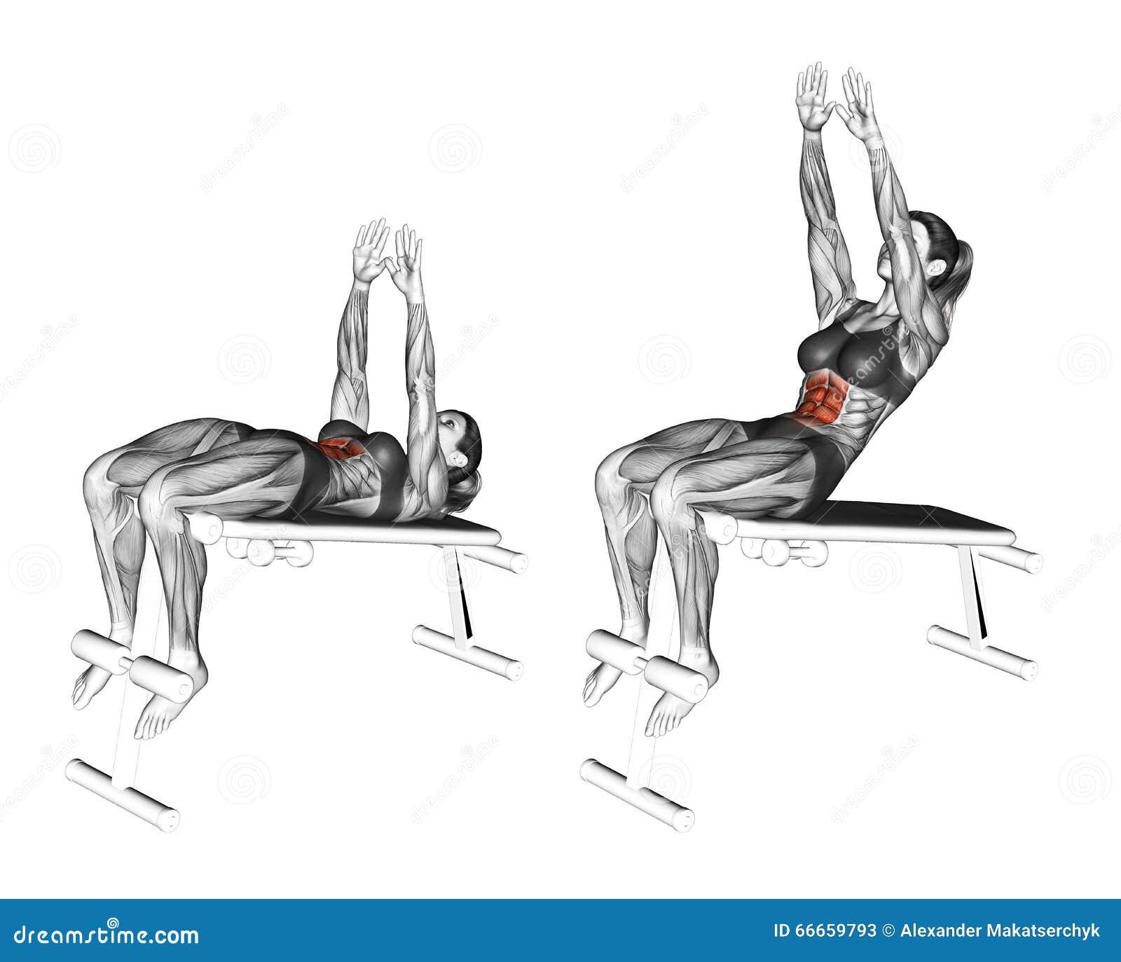 Fitness exercising. Decline Ab Reach. Female