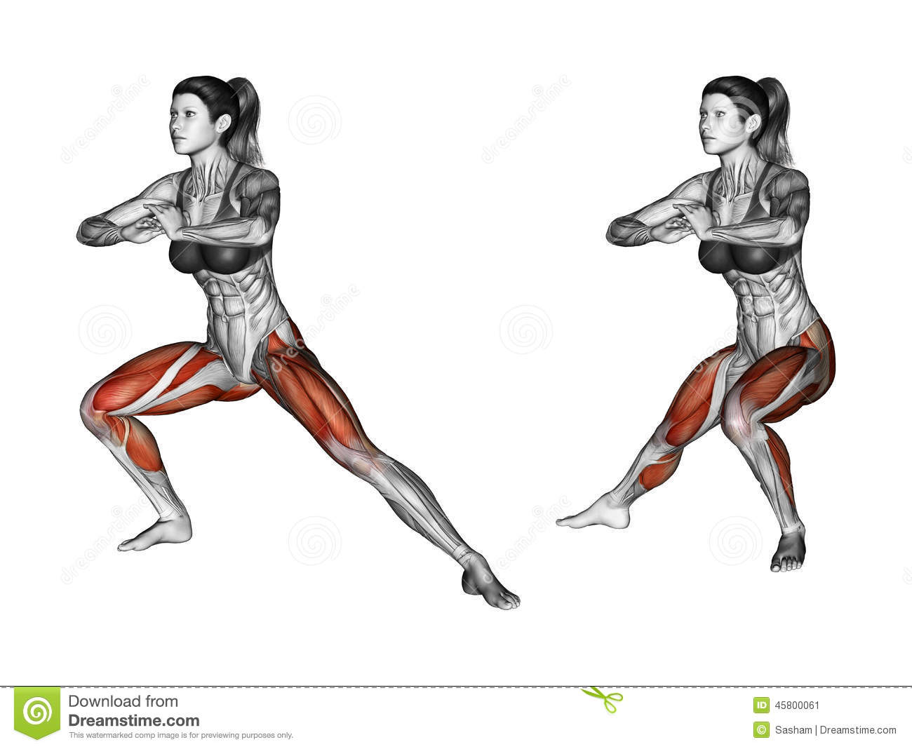 Fitness Exercising. Side Lunges. Female Stock Illustration ...