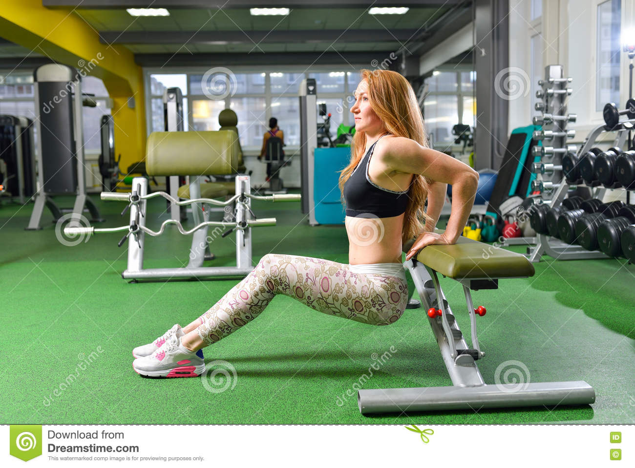 Fitness, sport, exercising lifestyle - Fit woman doing triceps dips at gym. Exercises with own body weight