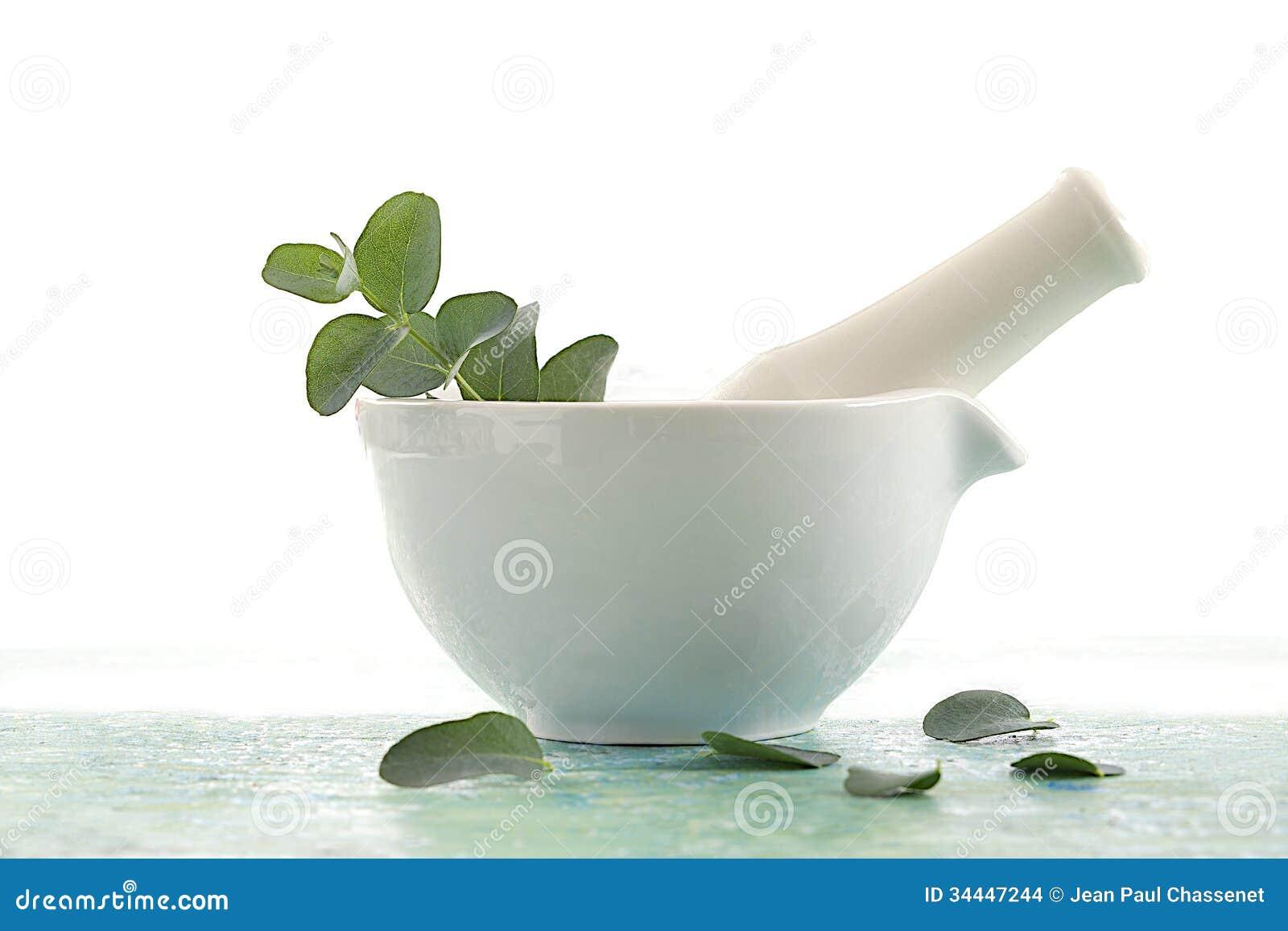 Fitoterapia - olio essenziale dell eucalyptus